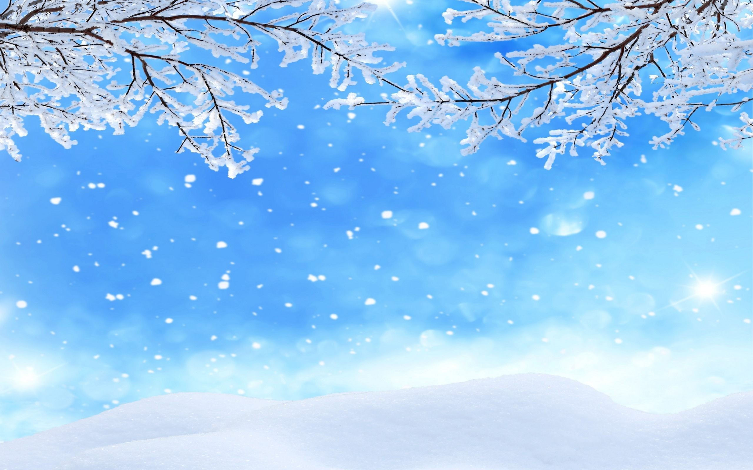 Winter Background Images ·① Download Free Awesome High