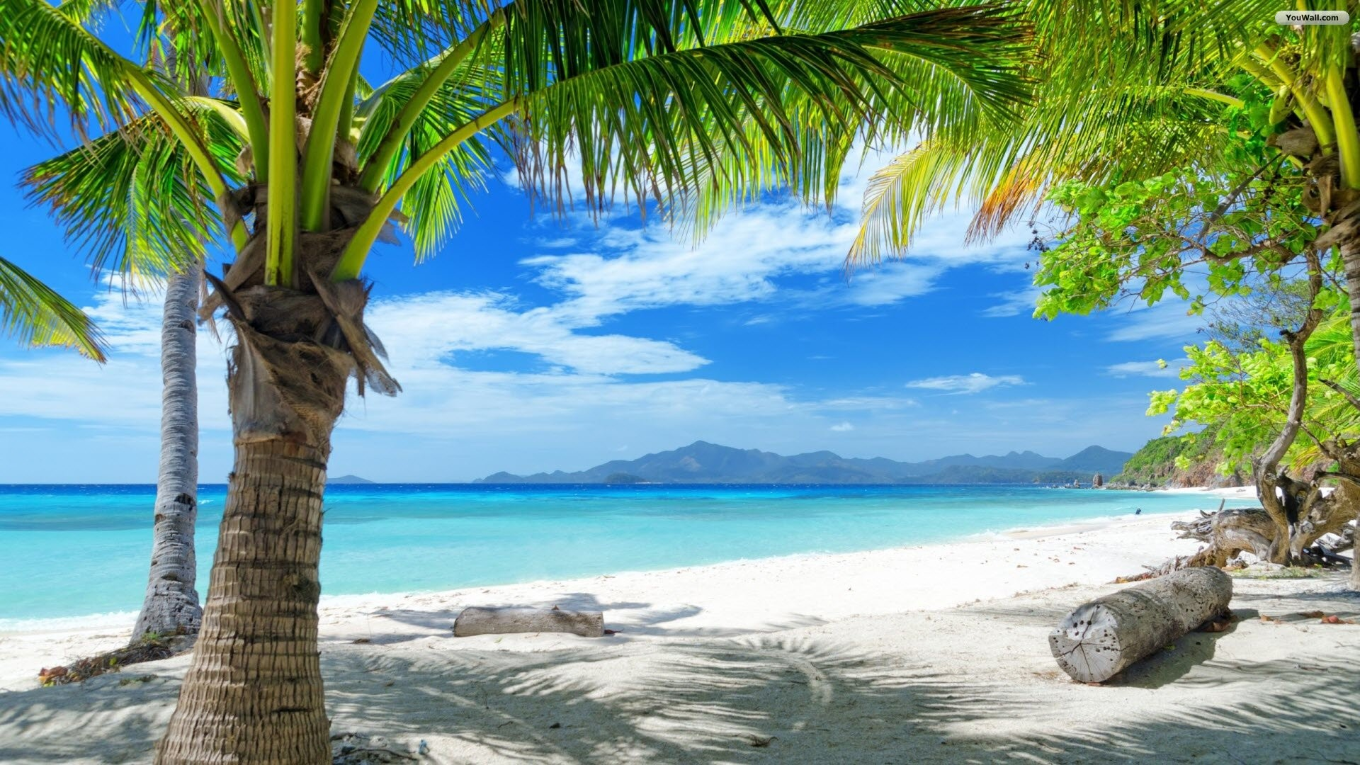 beach paradise wallpaper ·①