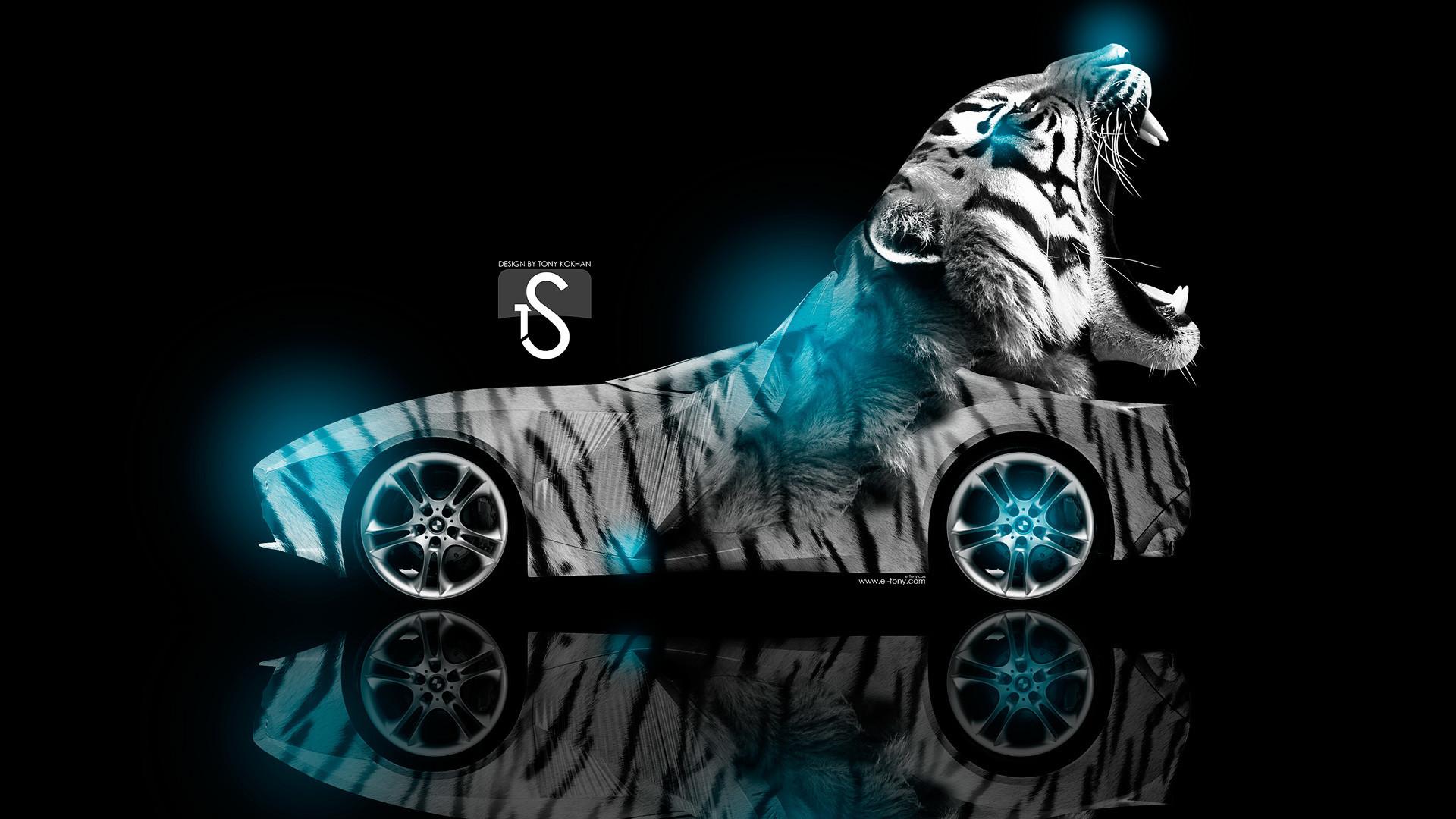 Cool Tiger Wallpapers Wallpapertag