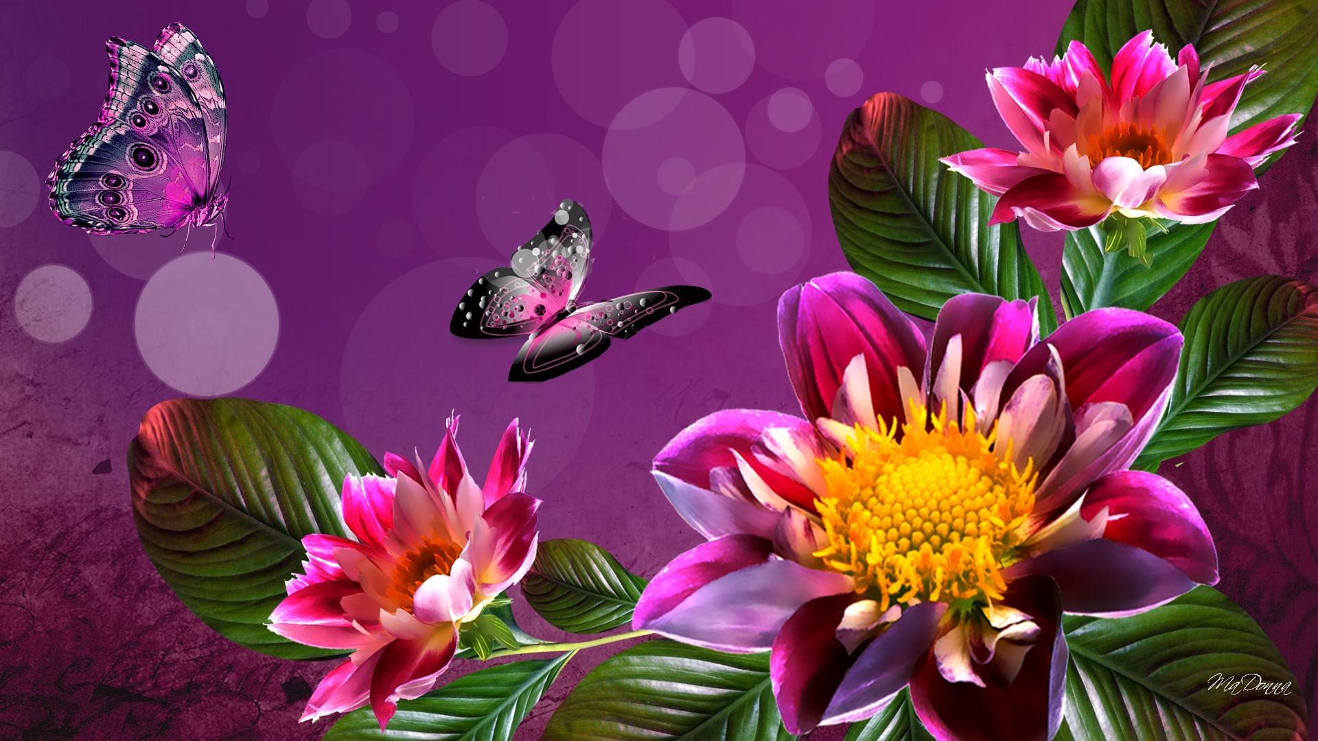 Flower computer backgrounds - Flower wallpaper macbook ...