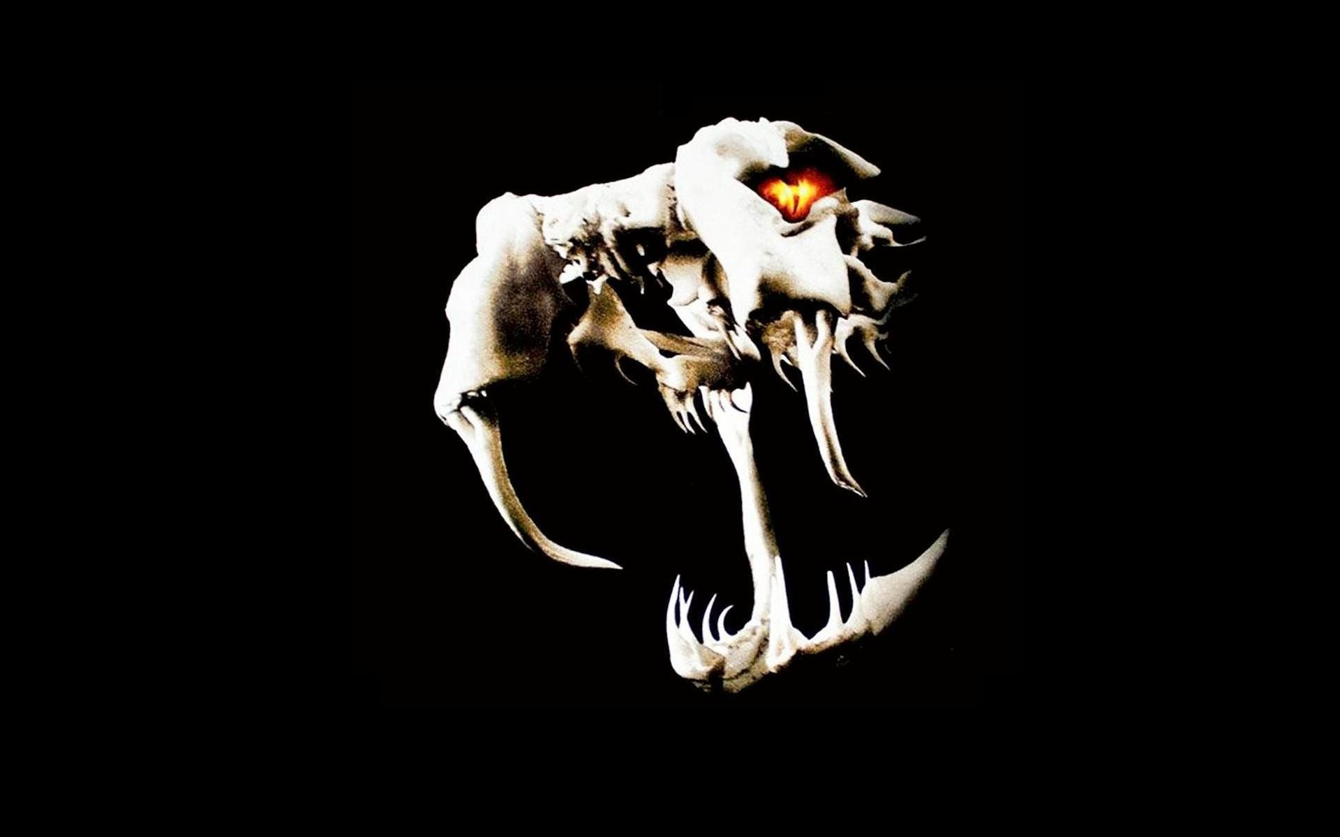Randy orton viper logo - photo#32