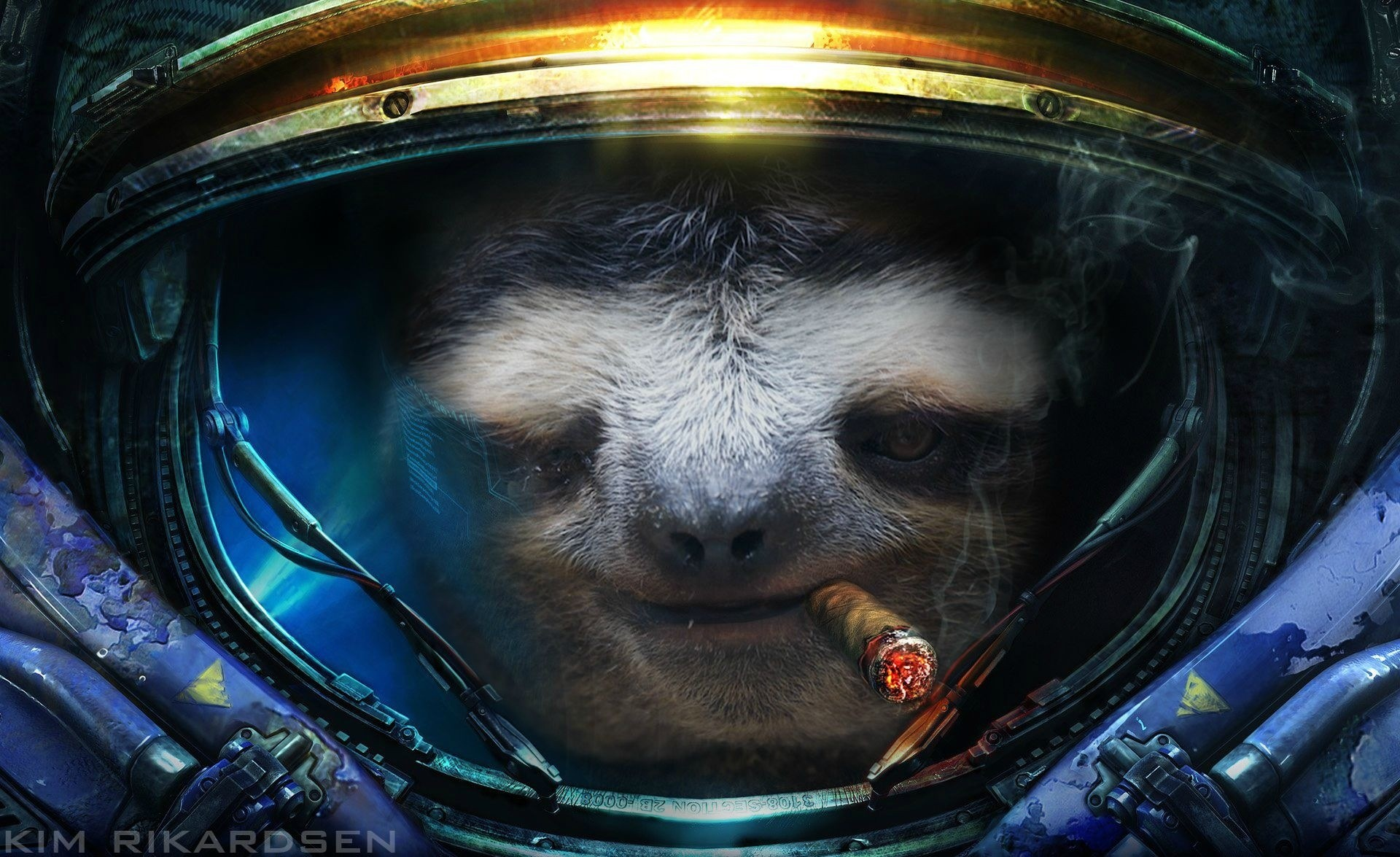 Sloth Wallpaper Download Free Stunning Hd Wallpapers For