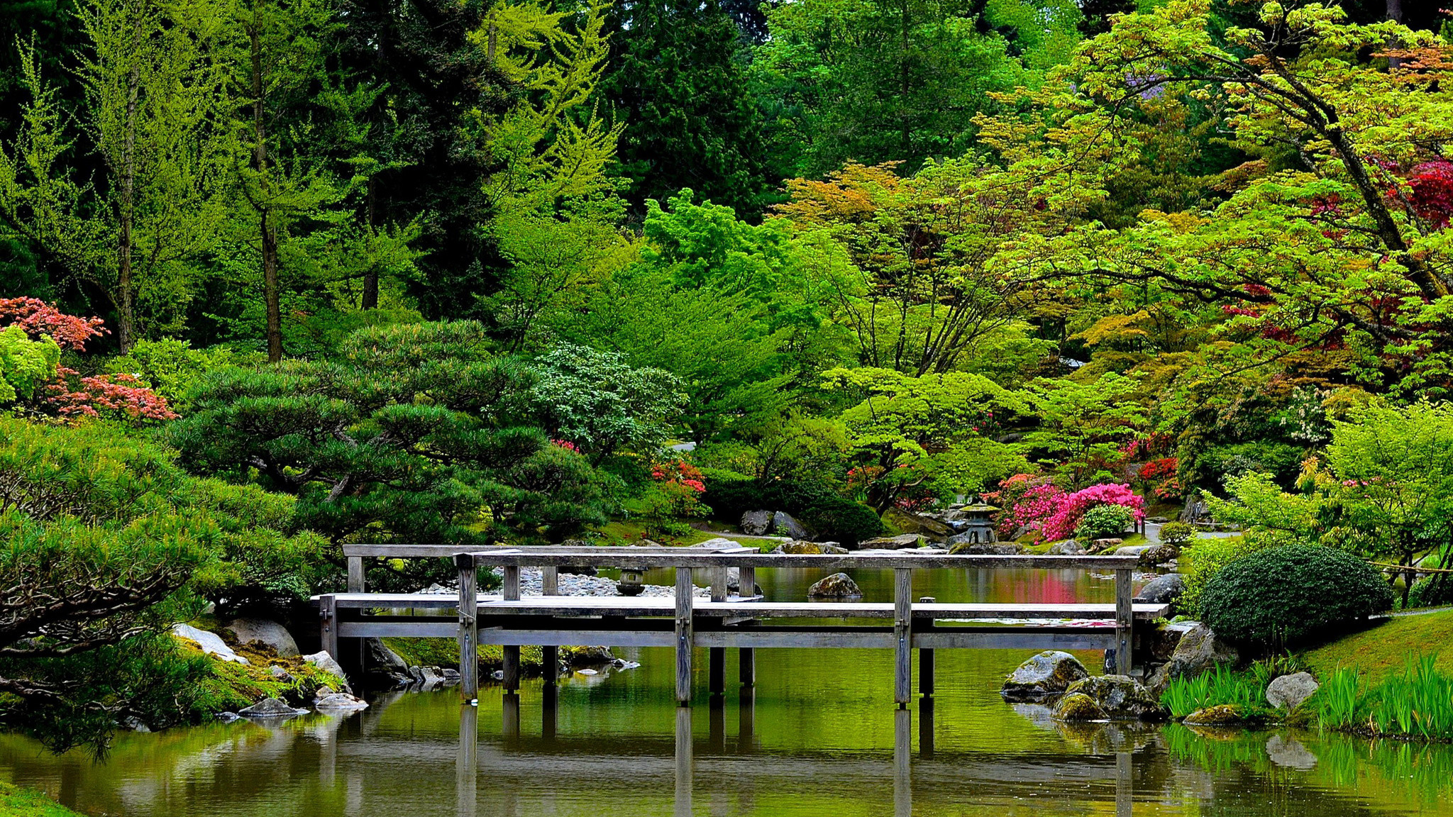 japanese garden desktop wallpaper 183��