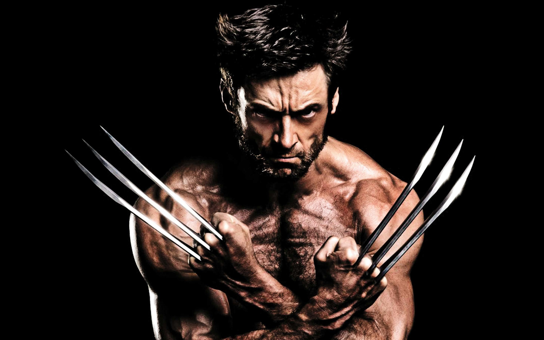 X Men Wallpapers Wolverine