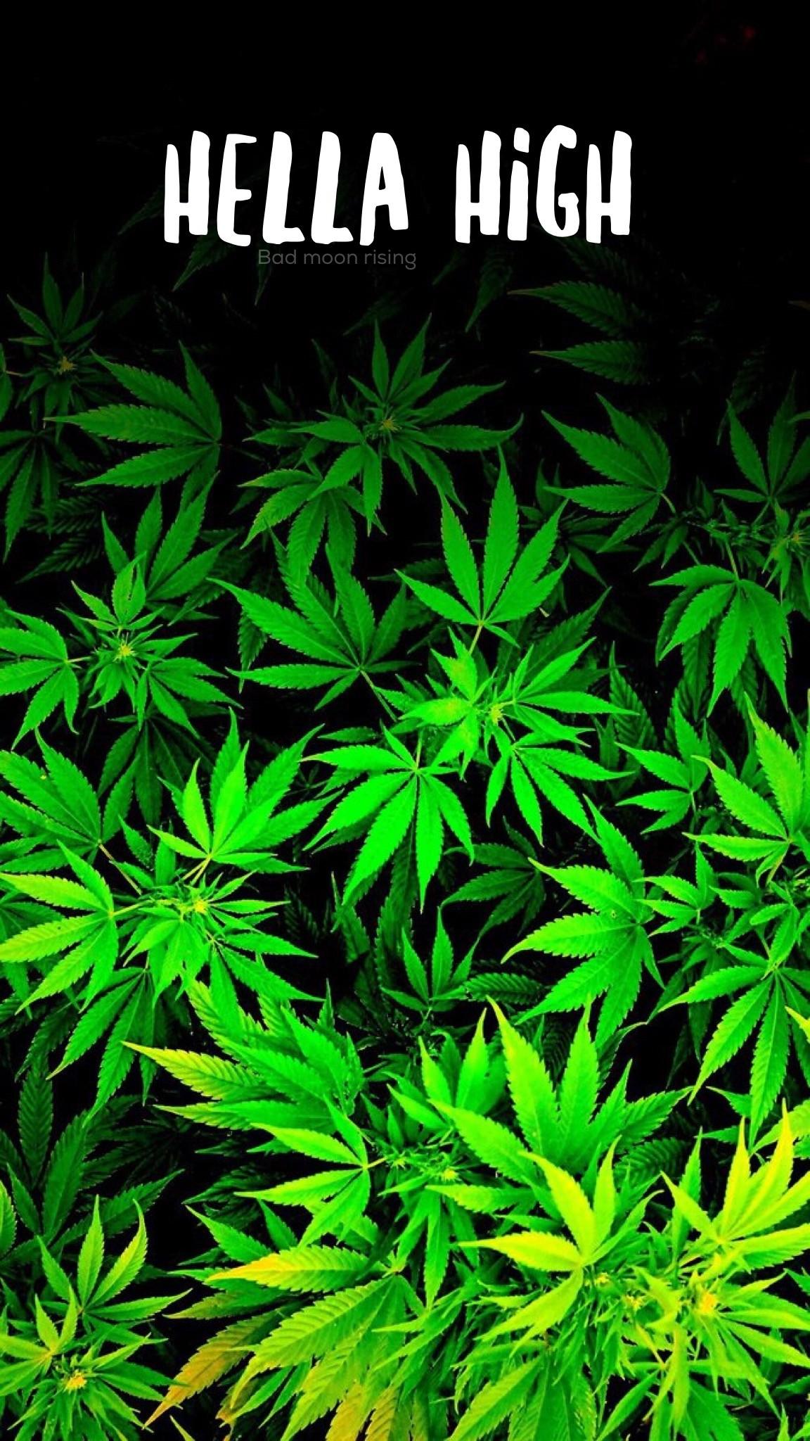 Trippy marijuana background wallpapertag - Stoner tumblr ...