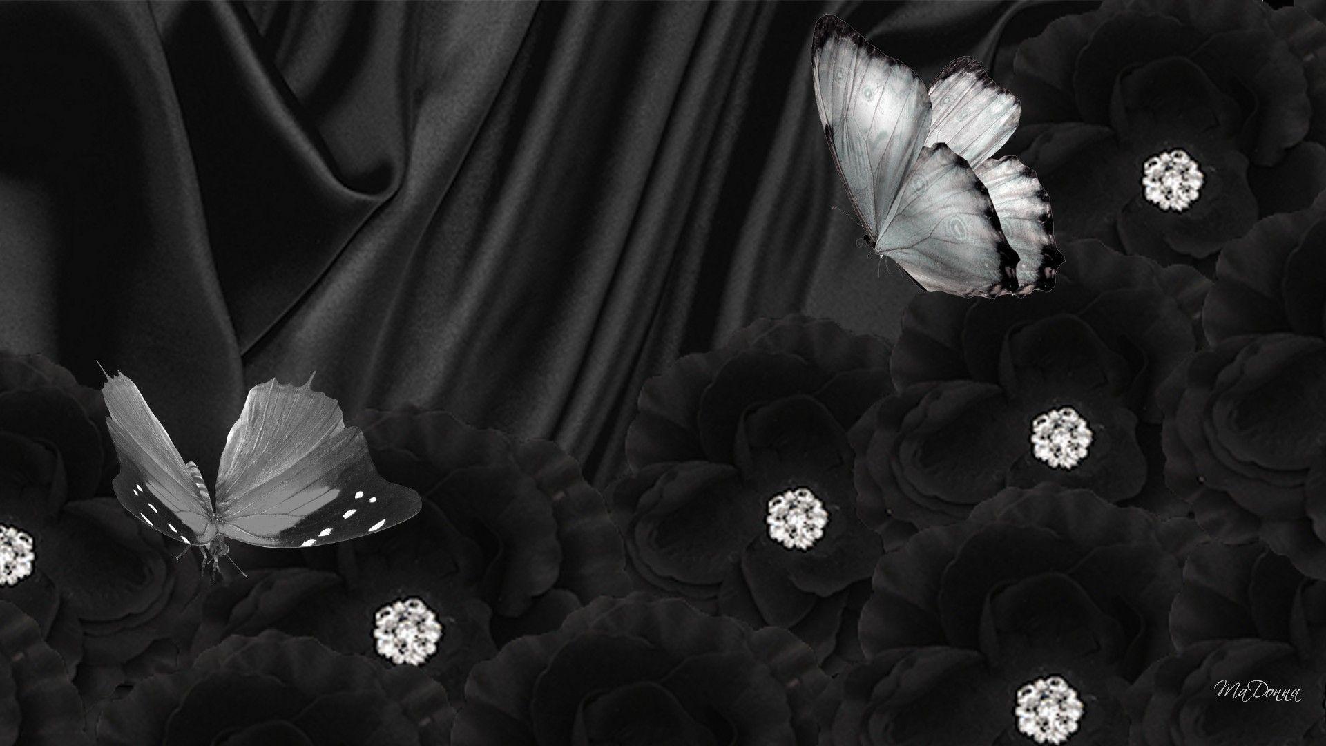 обои на рабочий стол белая бабочка с бриллиантами на черном фоне