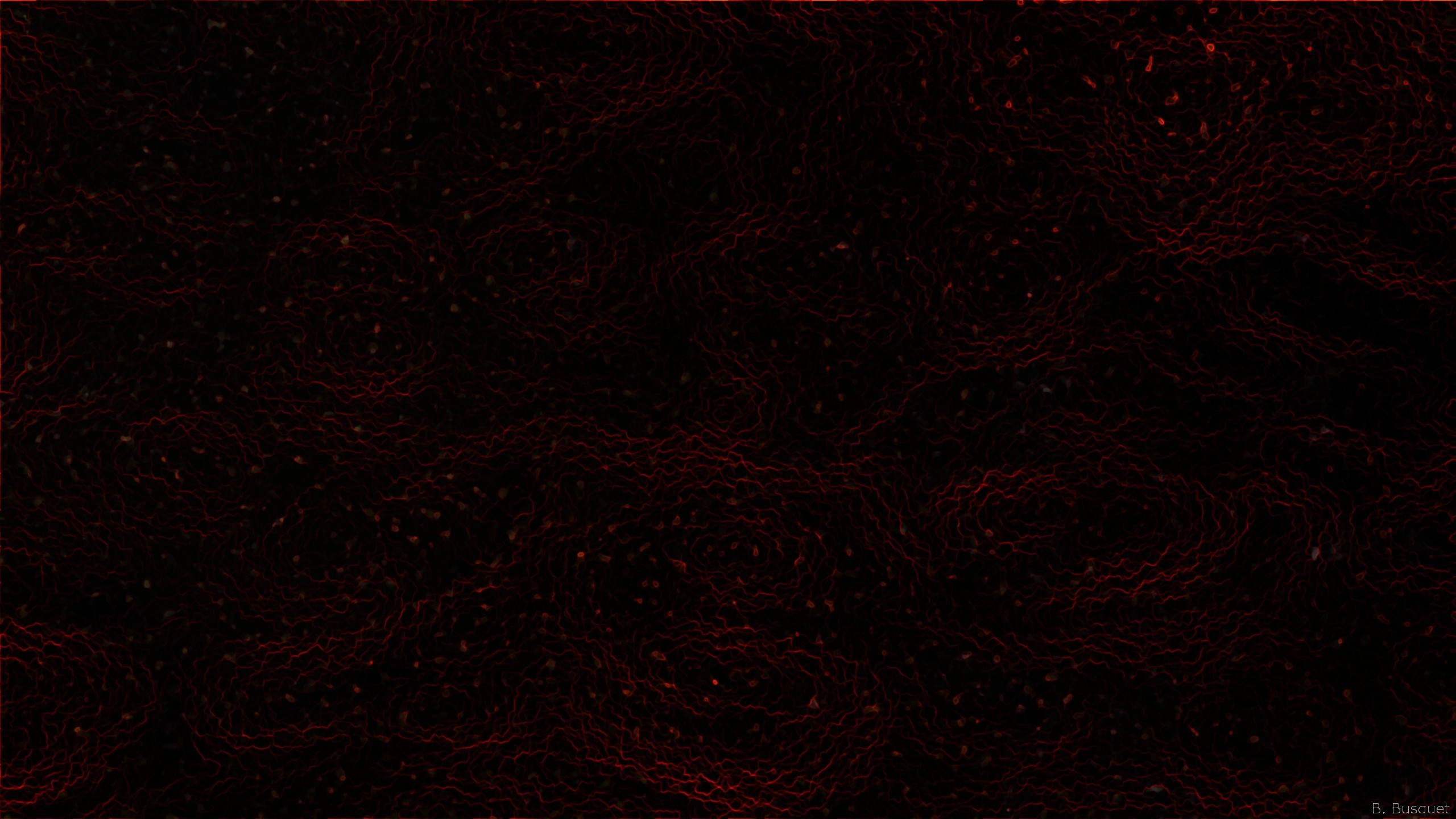 Black And Red Abstract Wallpaper Wallpapertag