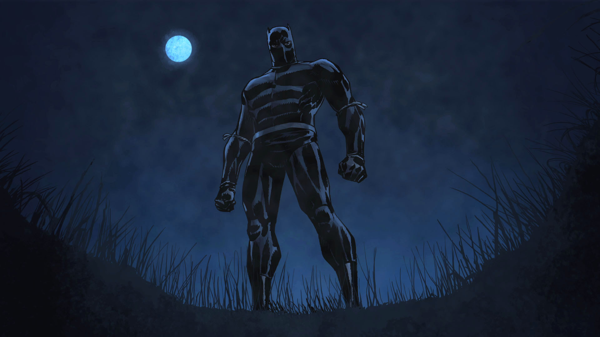 Black panther marvel wallpapers the black panther voltagebd Gallery