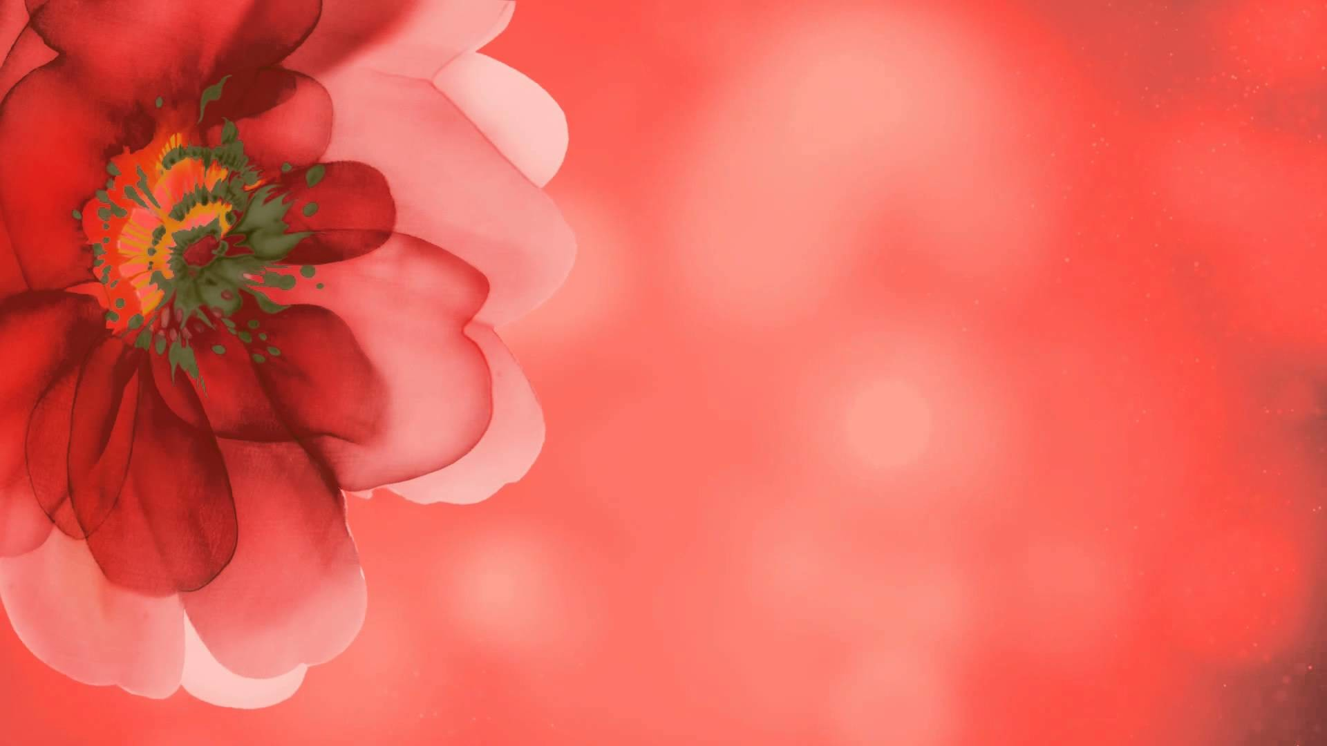 Red Flower Background
