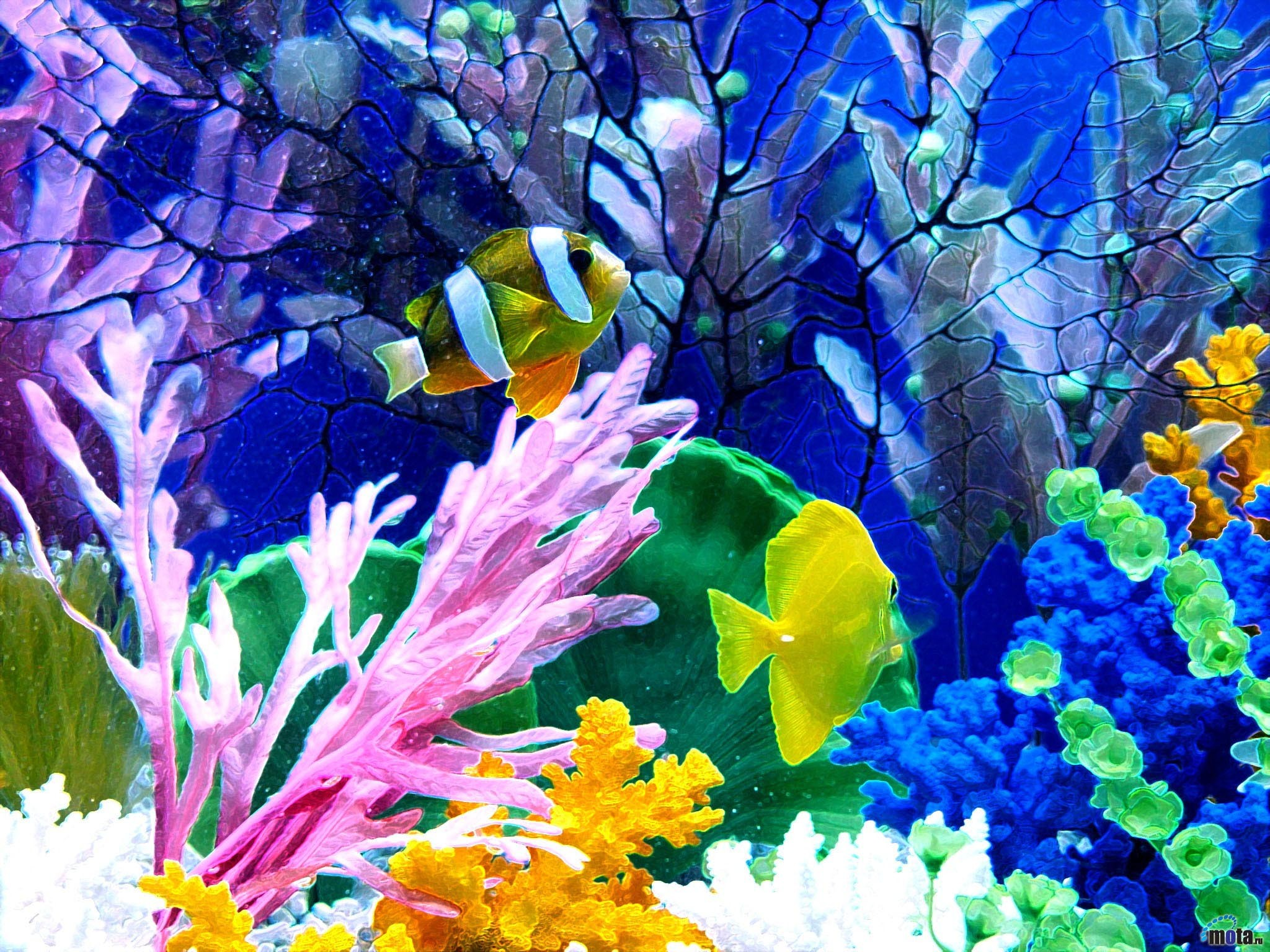 Aquarium background ·① Download free wallpapers for desktop and mobile devices in any resolution ...