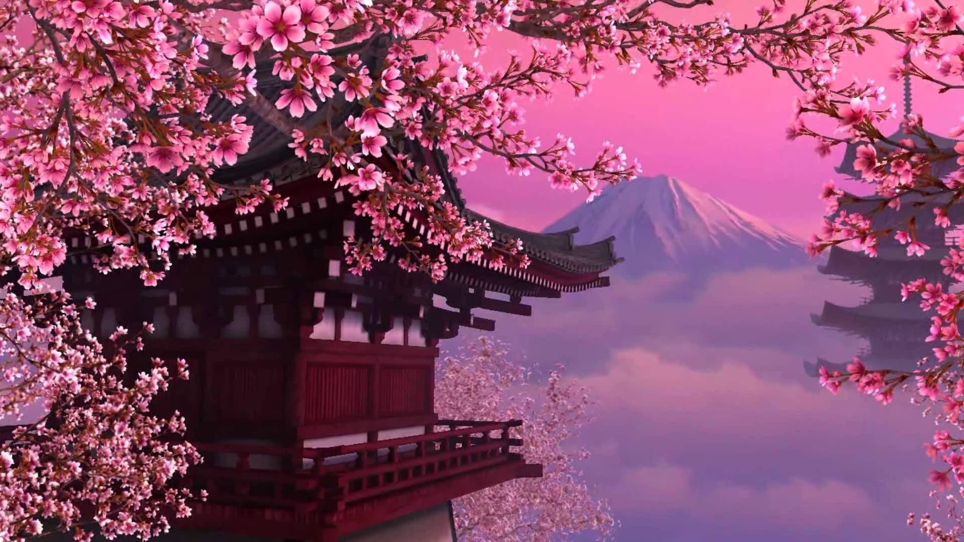 Cherry Blossom Background ·① WallpaperTag