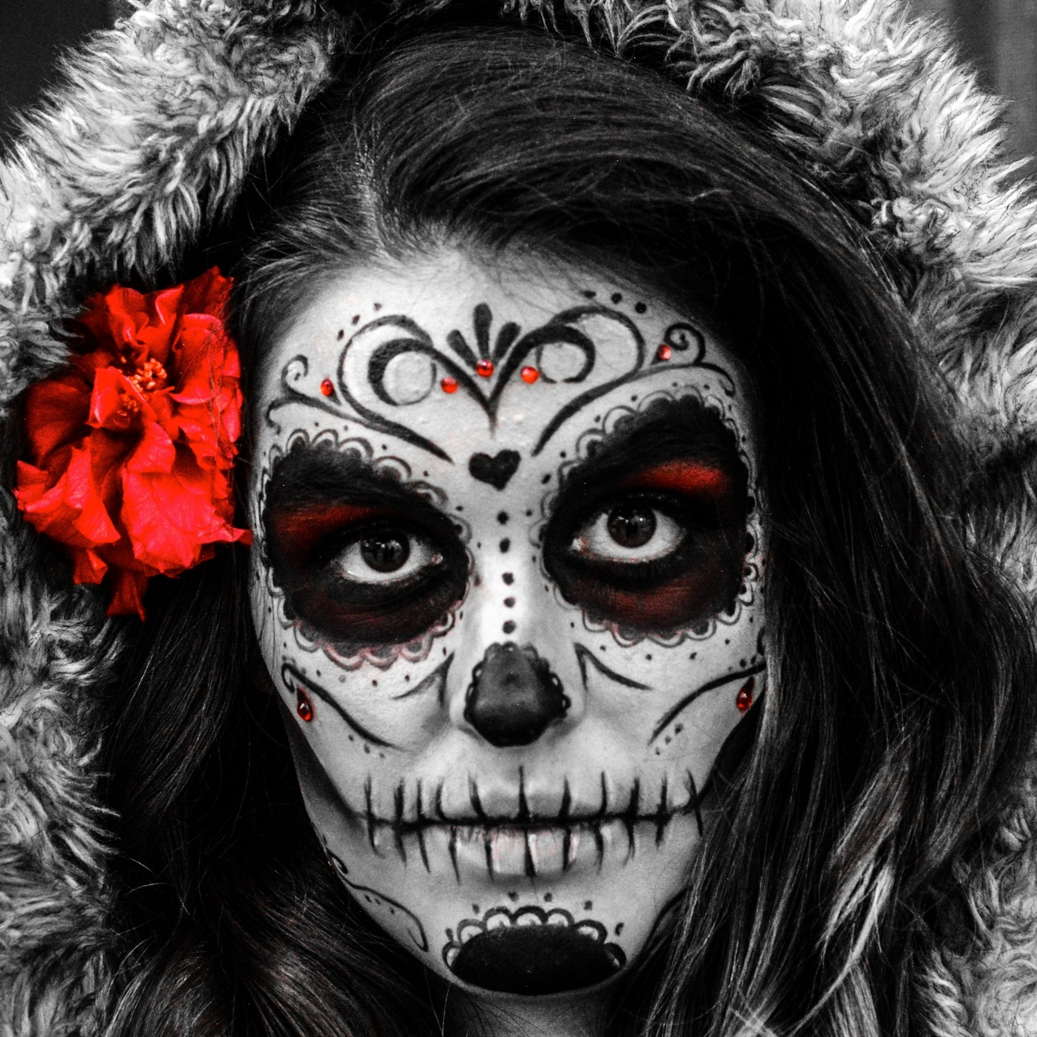 2048x2048 Artistic Sugar Skull. Wallpaper 605204 · Download · <b>hd ...