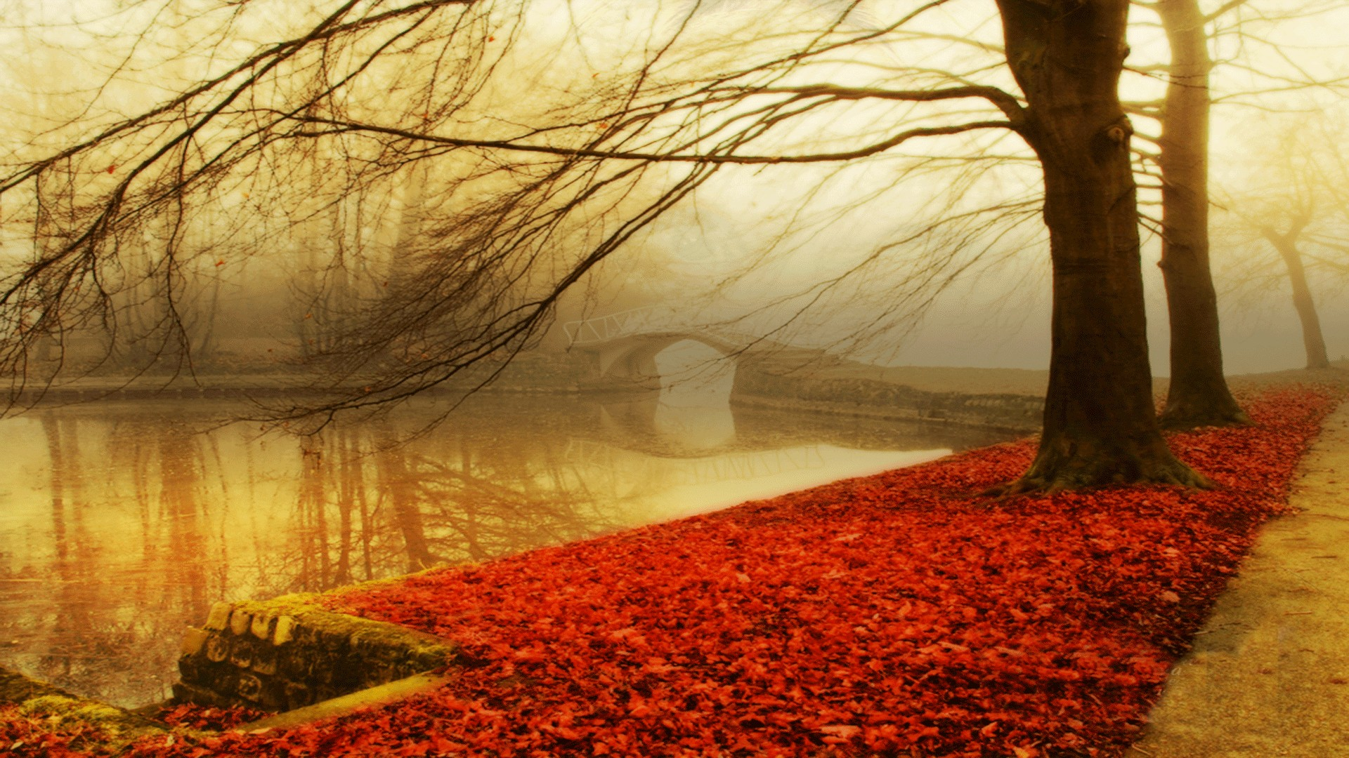Autumn Wallpaper Hd 183 ① Download Free Wallpapers For