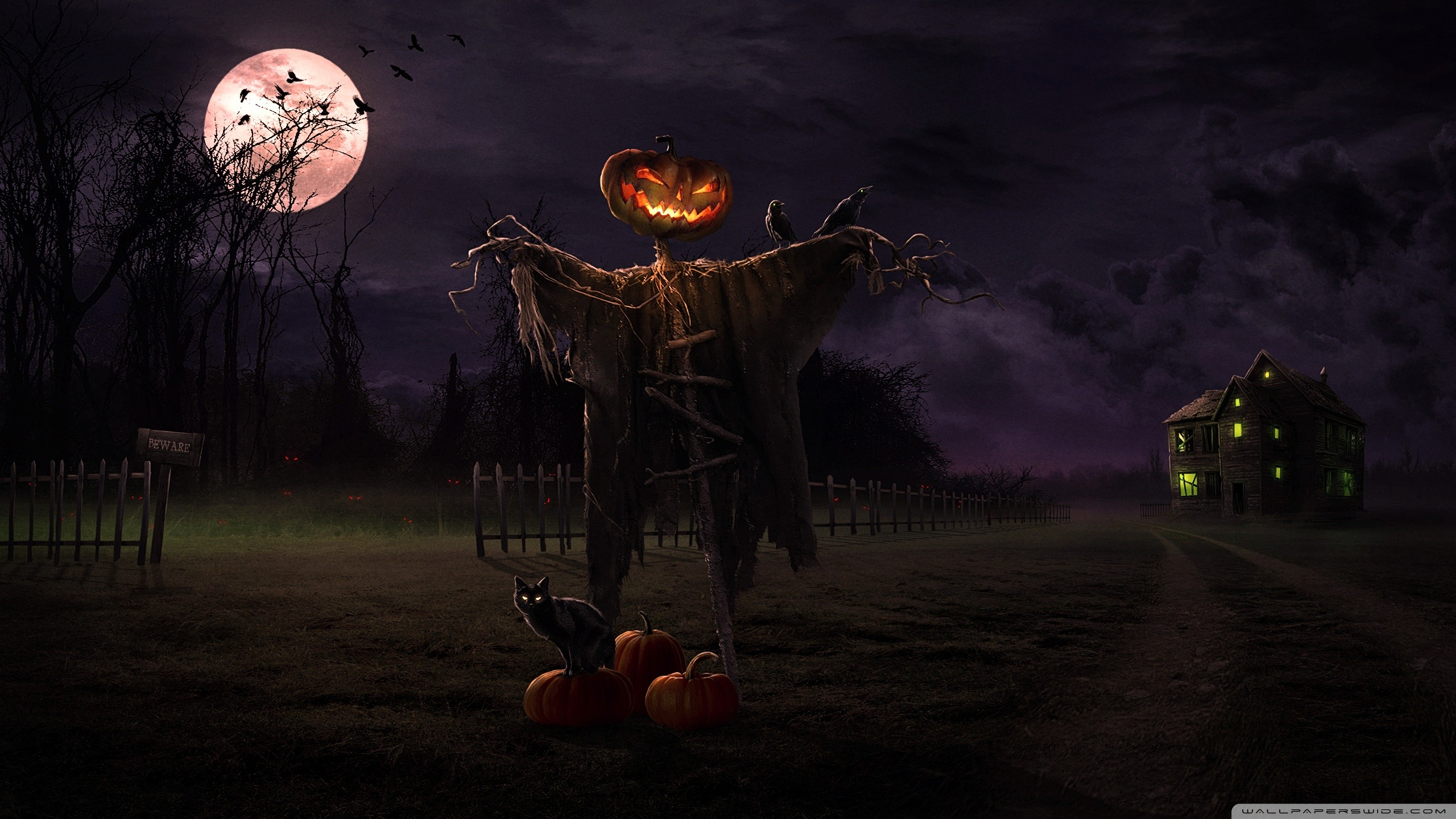 2560x1440 full size halloween desktop wallpaper 2560x1440 for full hd
