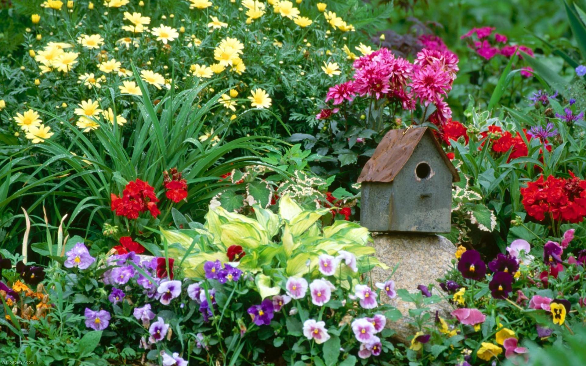 Flower gardens wallpapers 1920x1200 flower garden wallpaper download beautiful izmirmasajfo