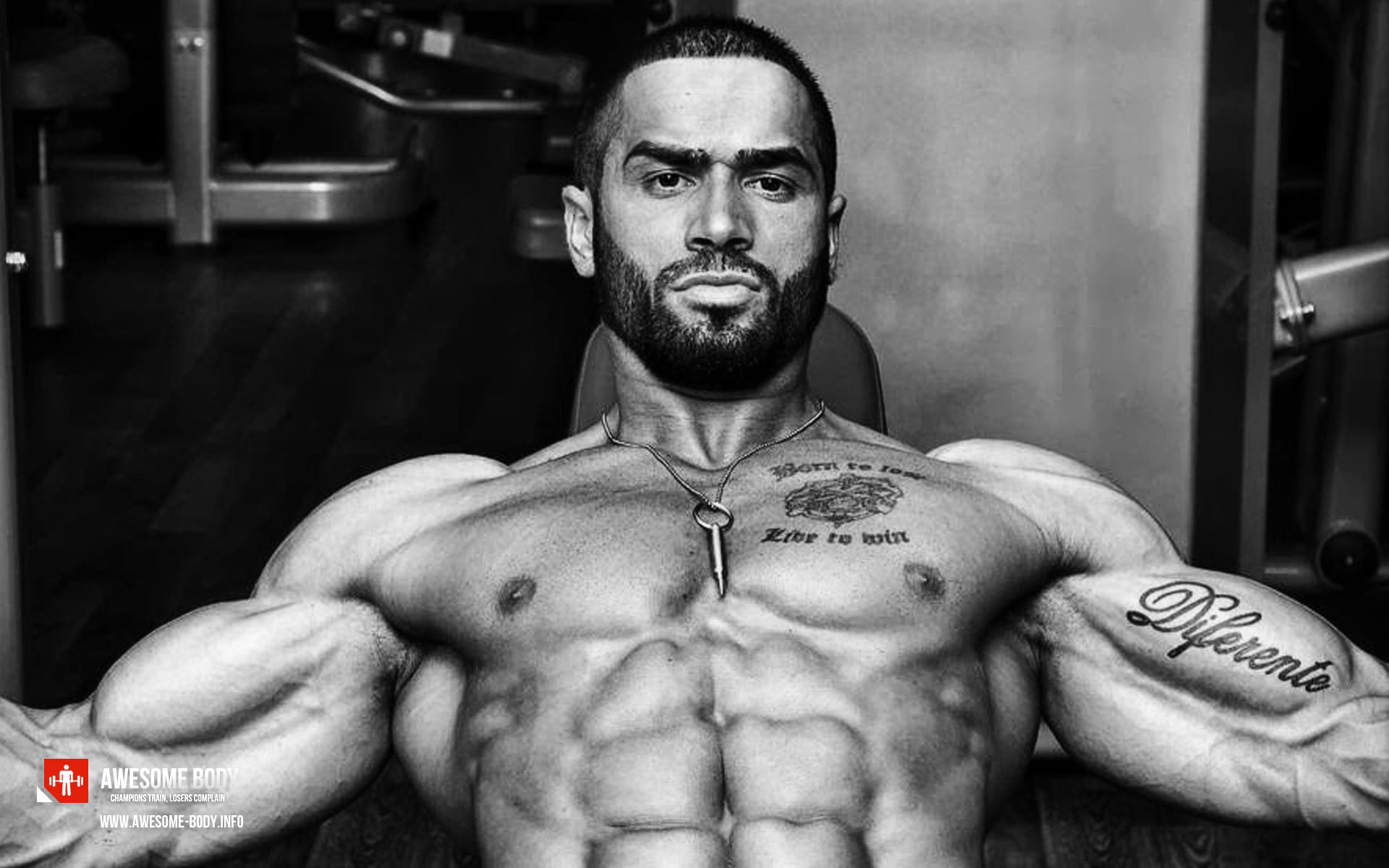 1920x1200 lazar angelov computer wallpaper