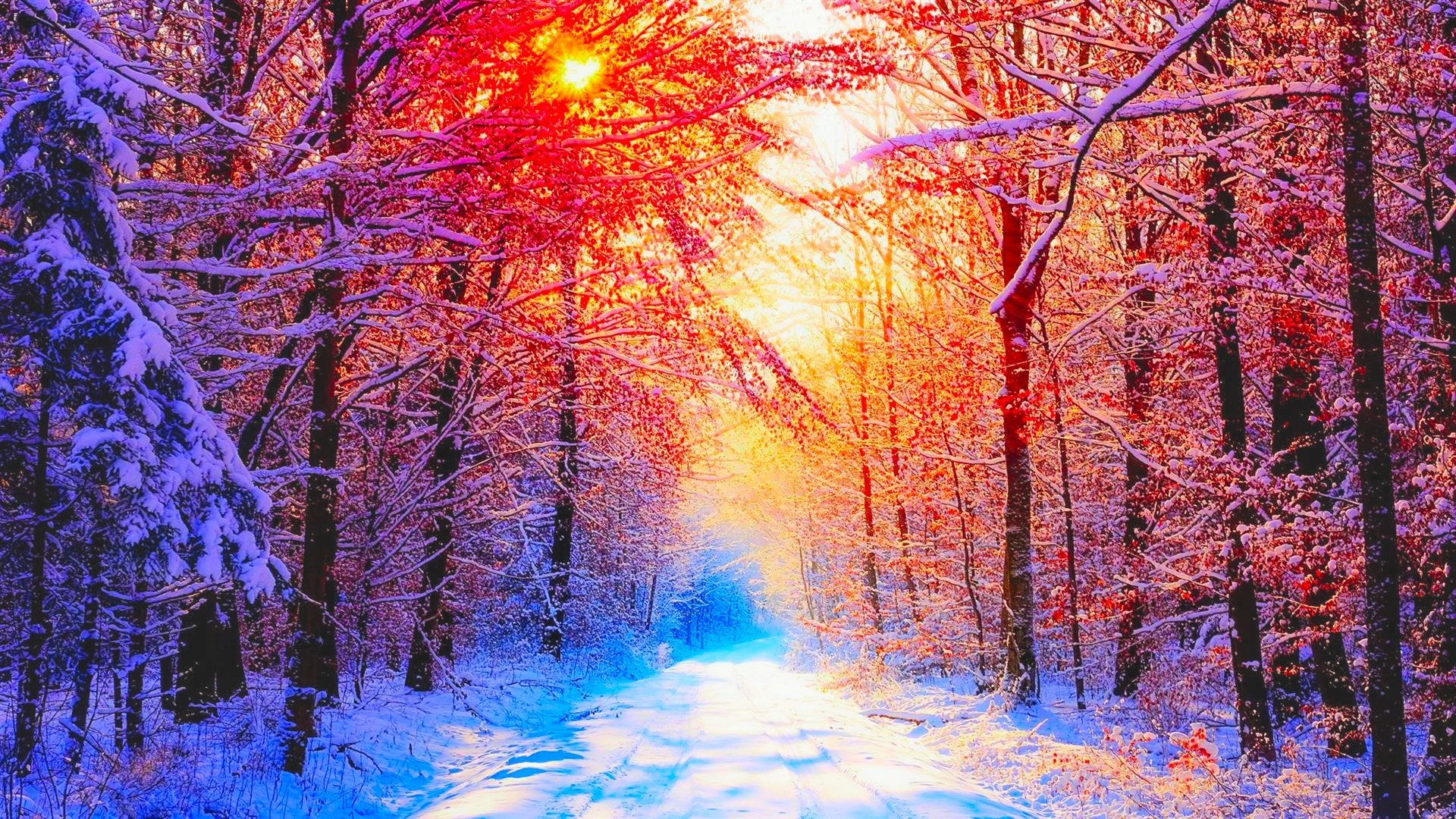Winter Pictures Backgrounds ·① WallpaperTag