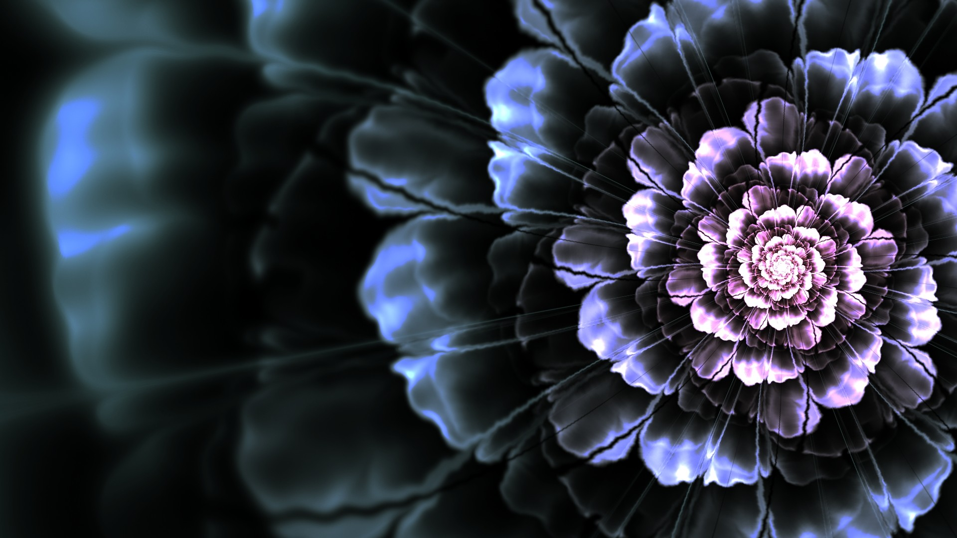Dark Flower Wallpaper Wallpapertag