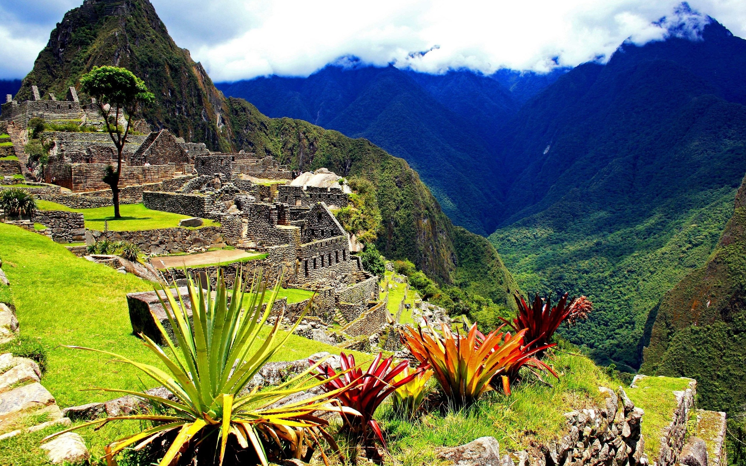 National Geographic Wallpaper Download: Machu Picchu Wallpaper National Geographic ·① WallpaperTag