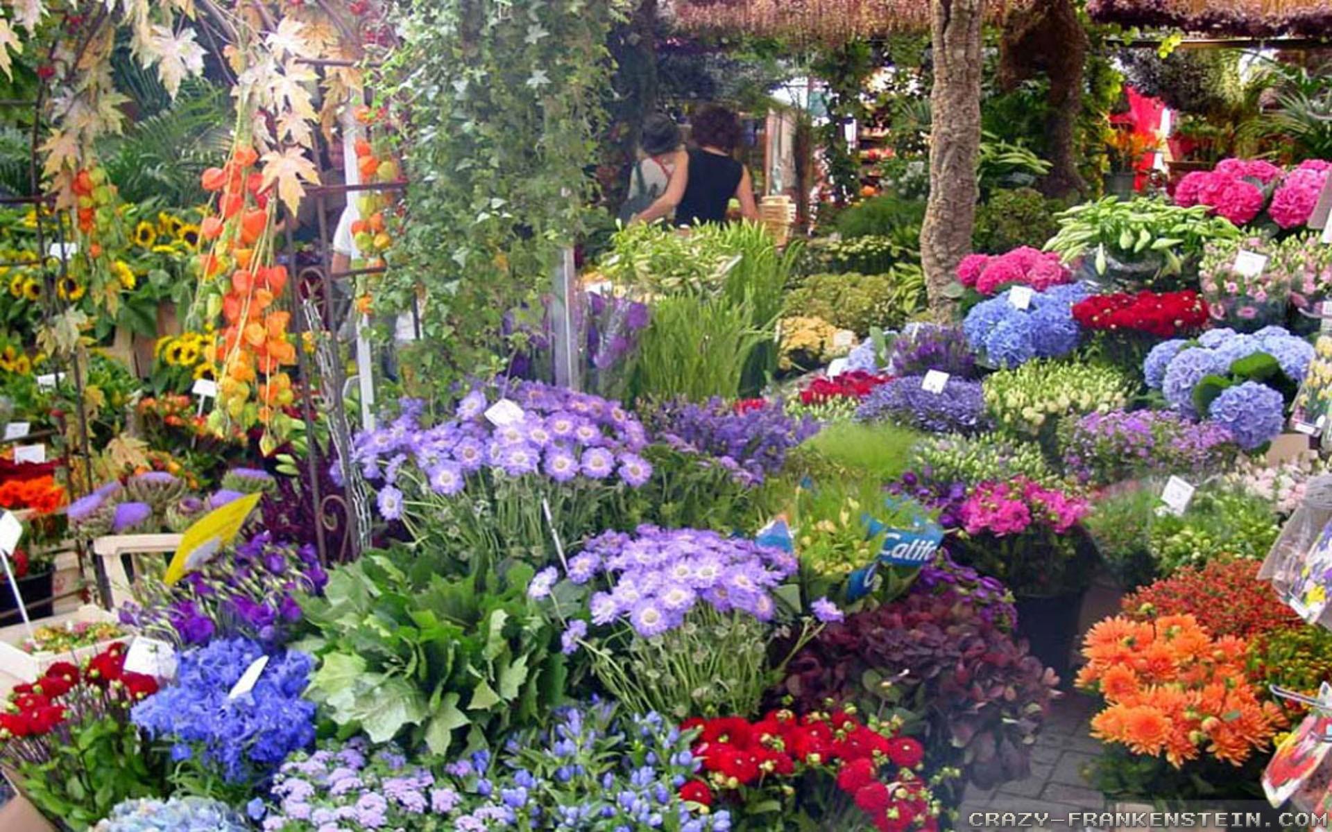 Flower gardens wallpapers hd mightylinksfo