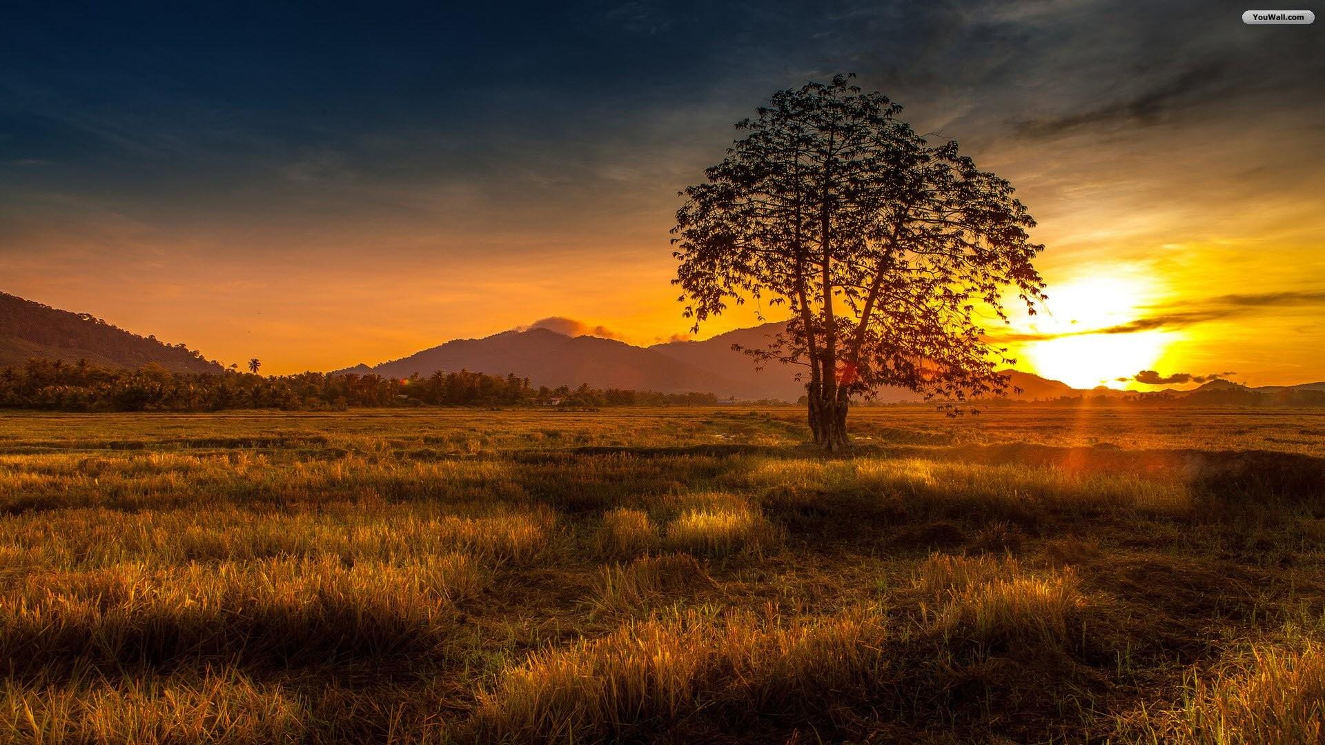1920x1080 Beautiful Sunset Wallpaper Download