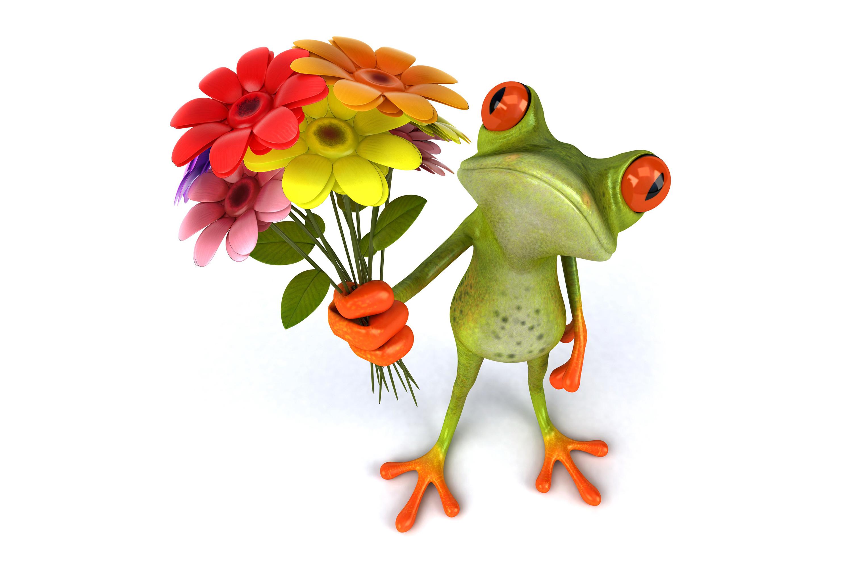 Прикольные картинки цветами, так обнять поздравление