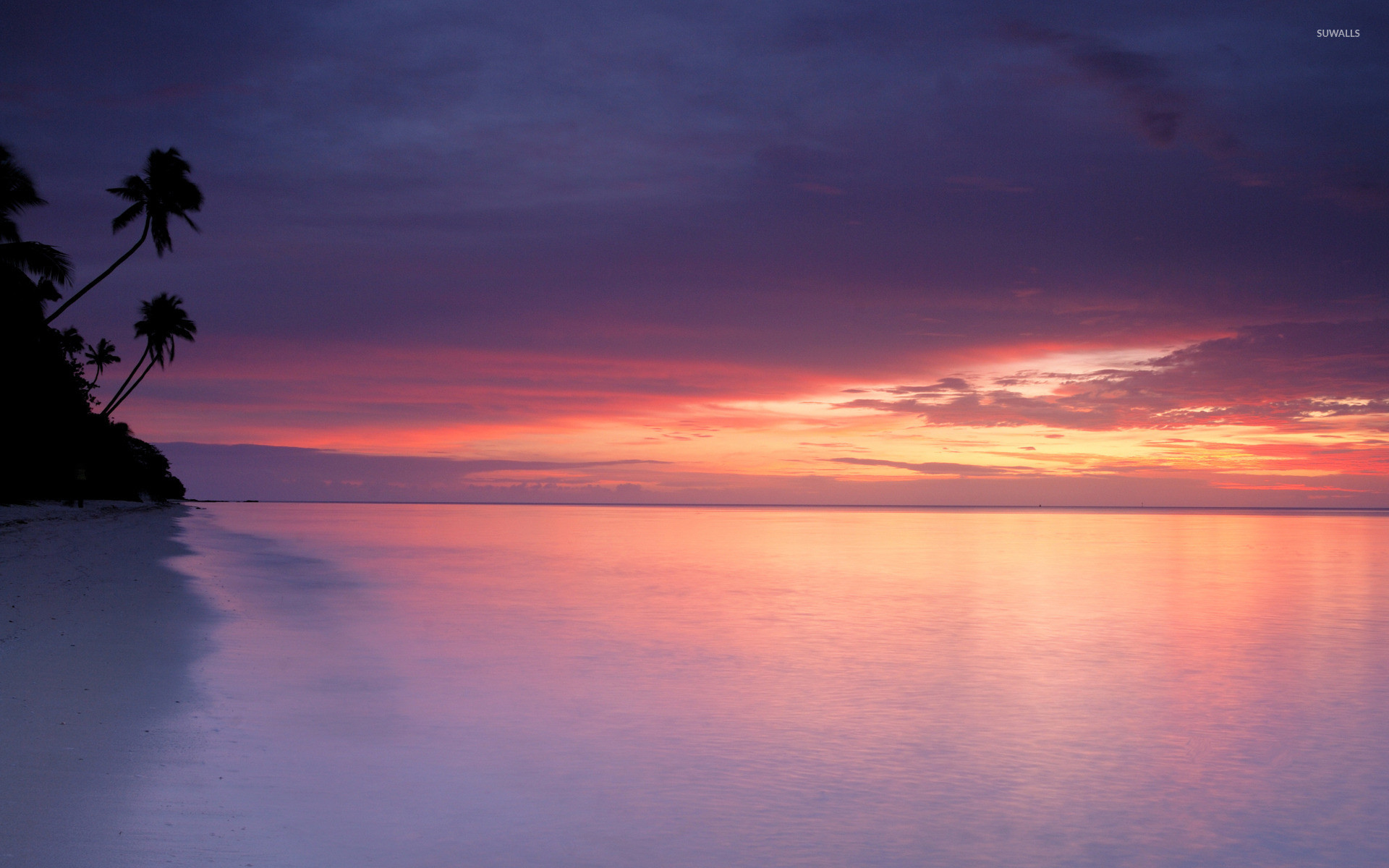 1920x1200 Purple Sunset At White Sandy Beach Wallpaper
