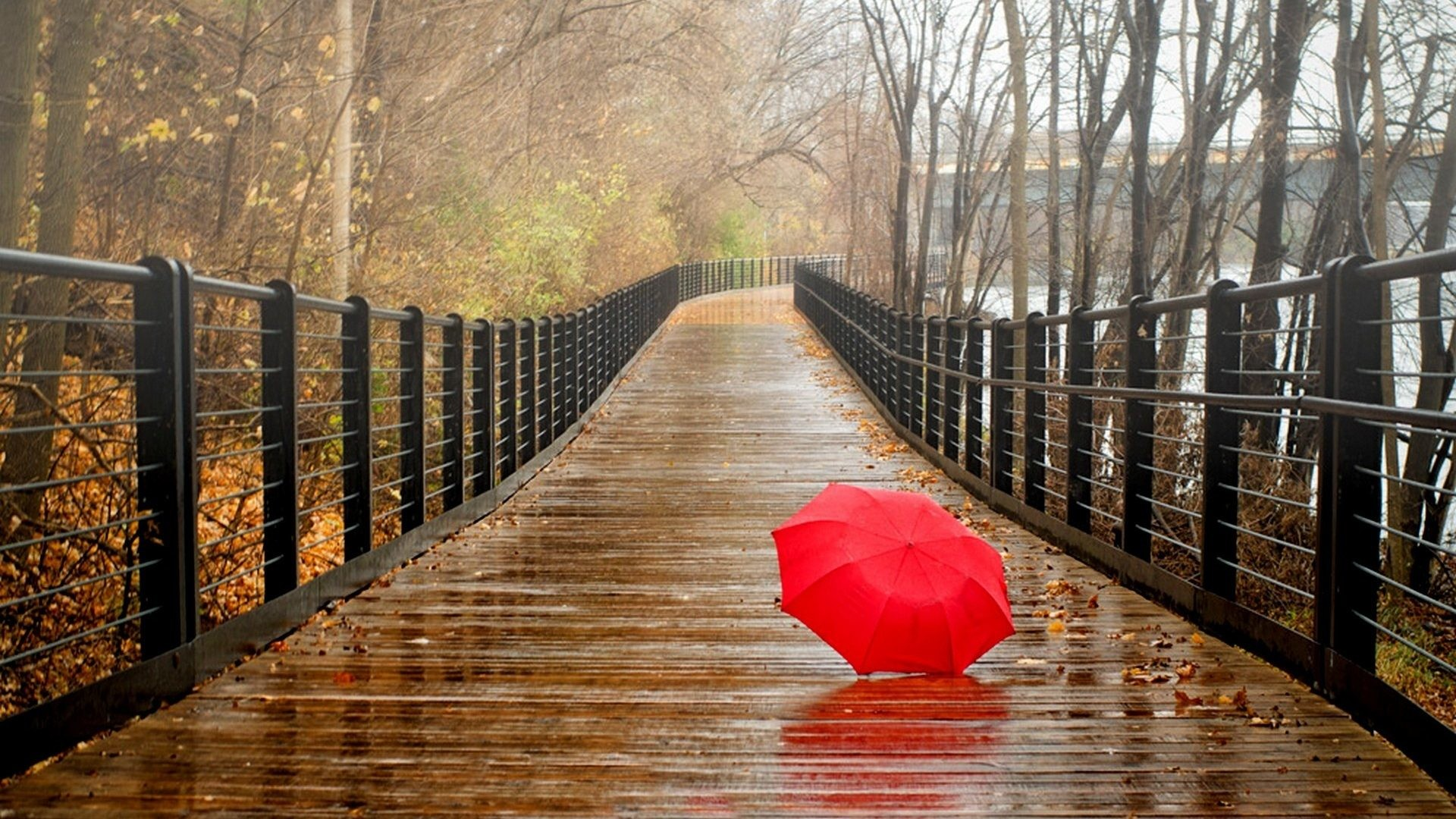 Rainy Day Wallpapers 1