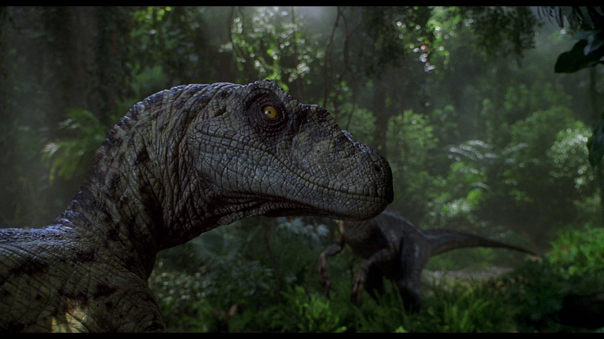 Jurassic park background wallpapertag - Jurassic park phone wallpaper ...
