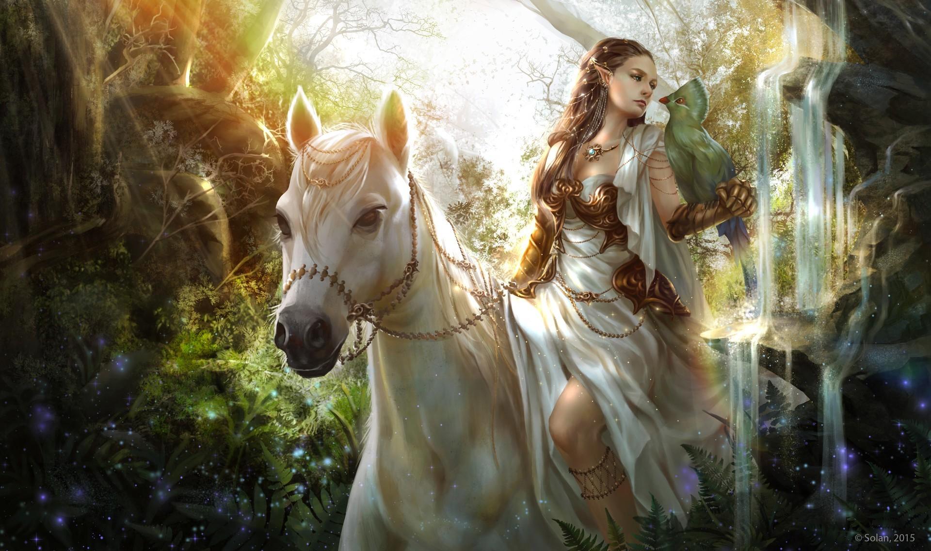 Fantasy Horses 640869
