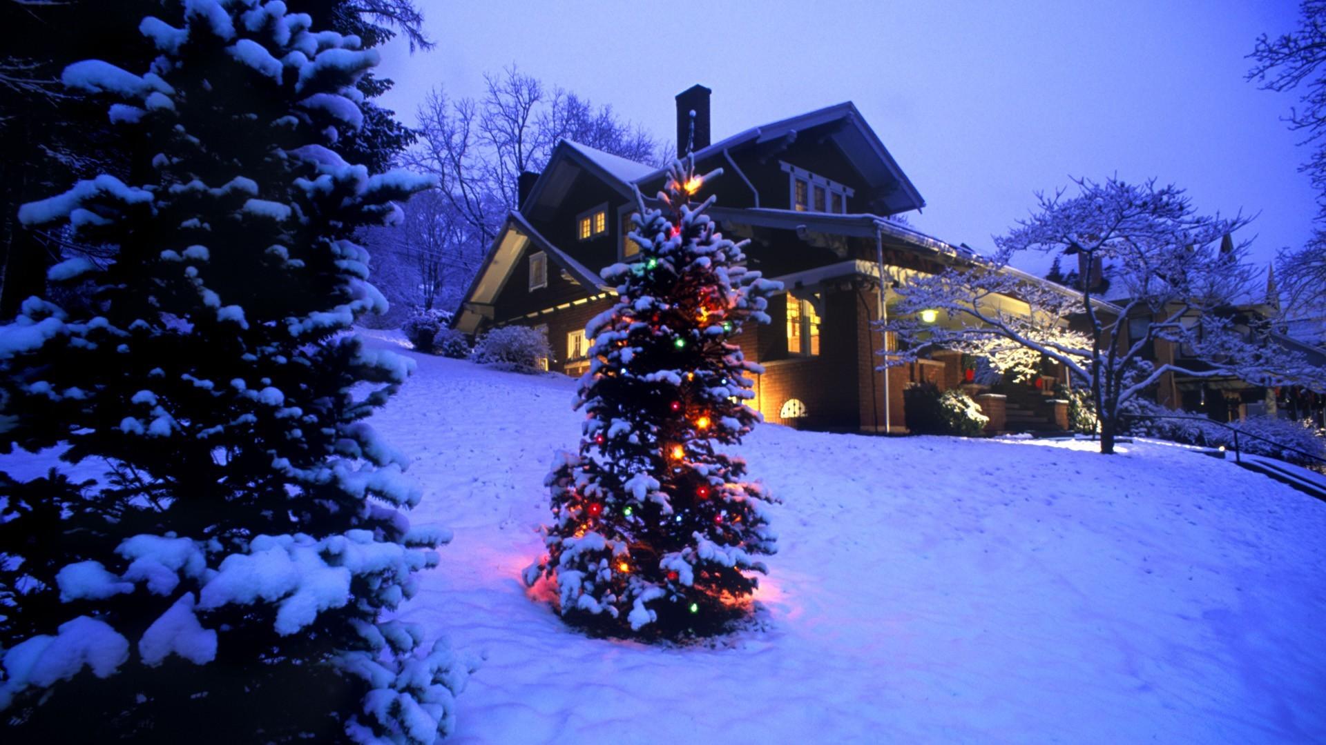 Christmas Snow Scene Wallpaper ·①