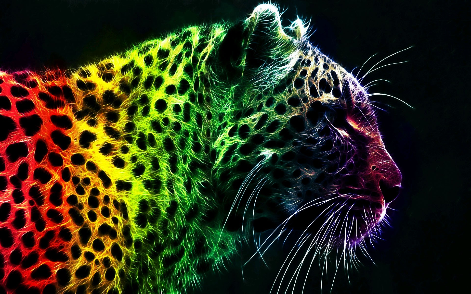 73+ Cool Animal backgrounds ·① Download free High
