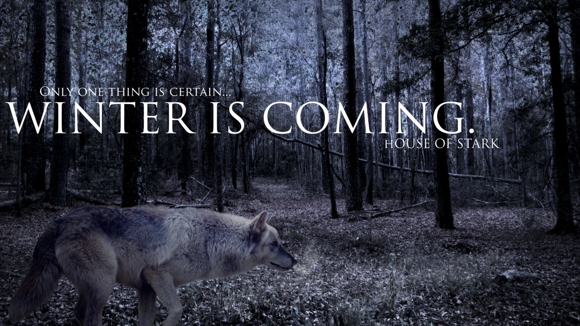 1920x1080 Game Of Thrones Wallpaper Winter Is Coming 2014 Free 15 High Definition Wallpapers HD