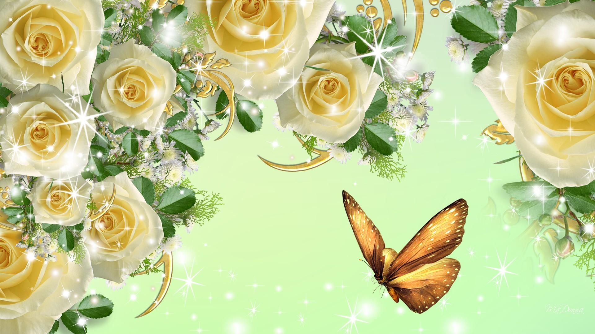 Yellow Rose Background 183 '�