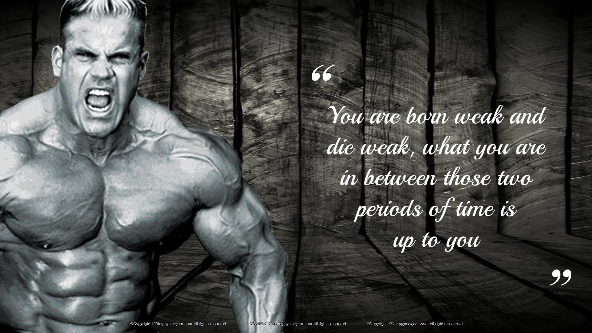 Gym Wallpaper ·① Download Free Beautiful HD Wallpapers For