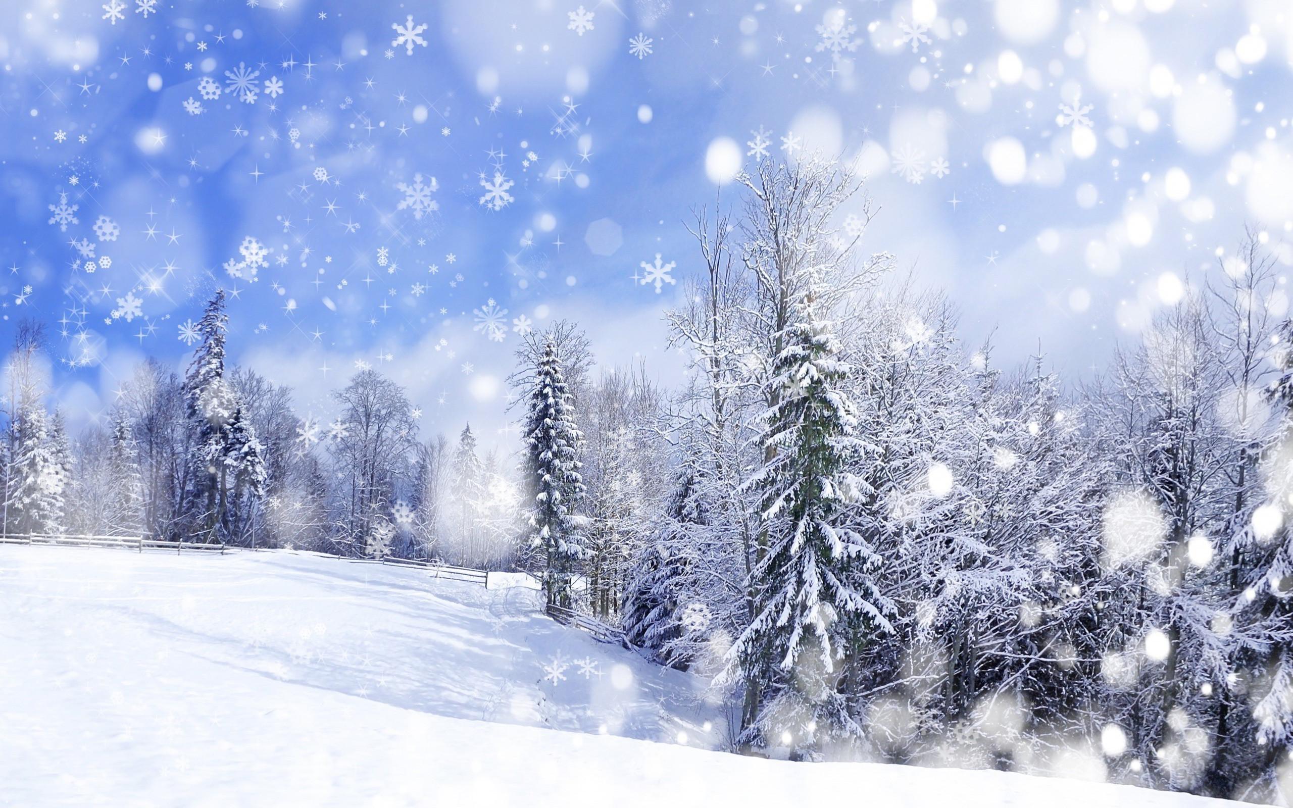 Winter Background Scenes ·① WallpaperTag