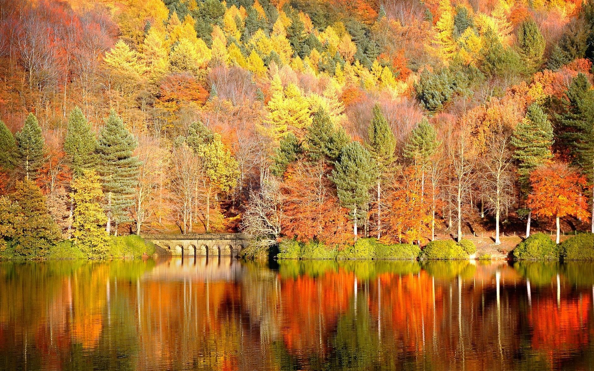 Fall Wallpaper Hd Download Free Wallpapers For Desktop: Fall Backgrounds Desktop ·① WallpaperTag