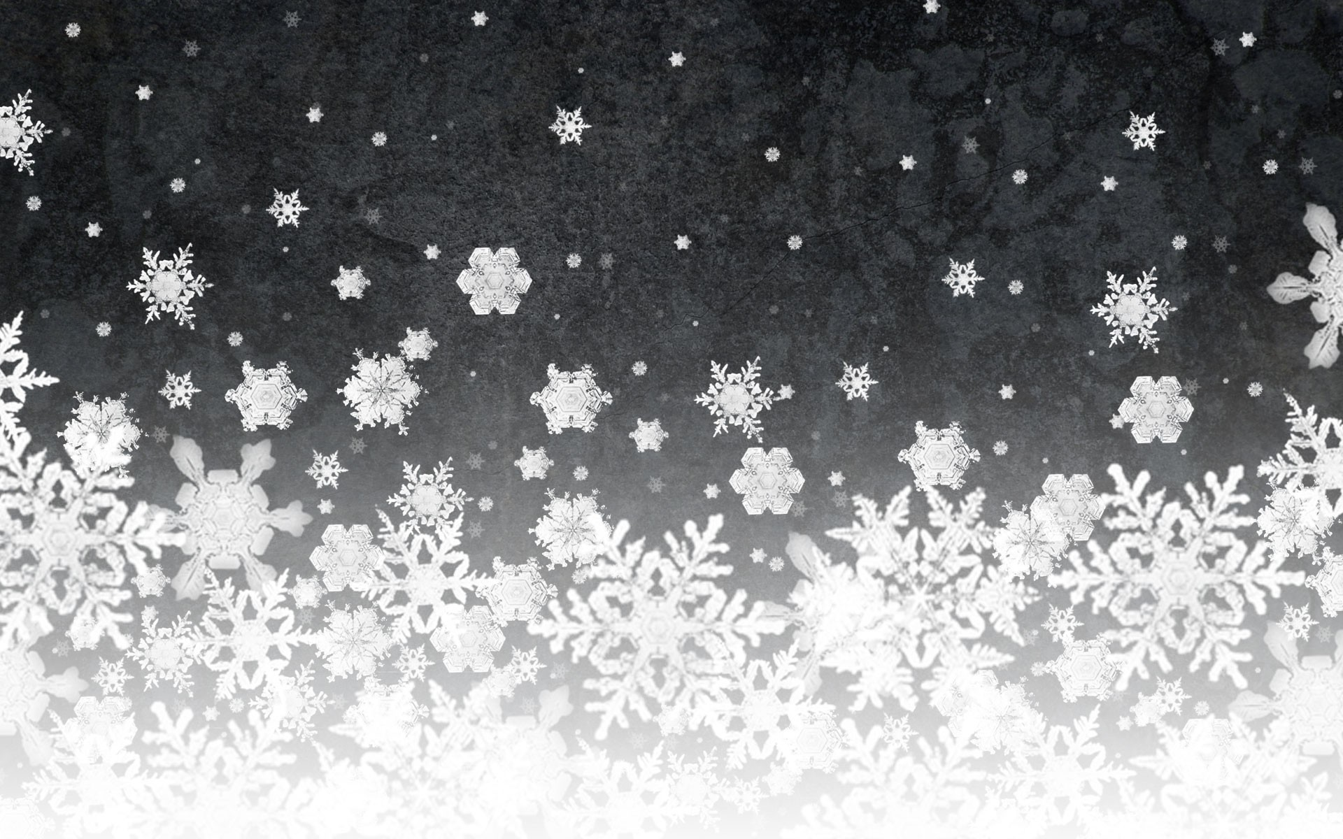 White Christmas Background Download Free Hd Wallpapers For