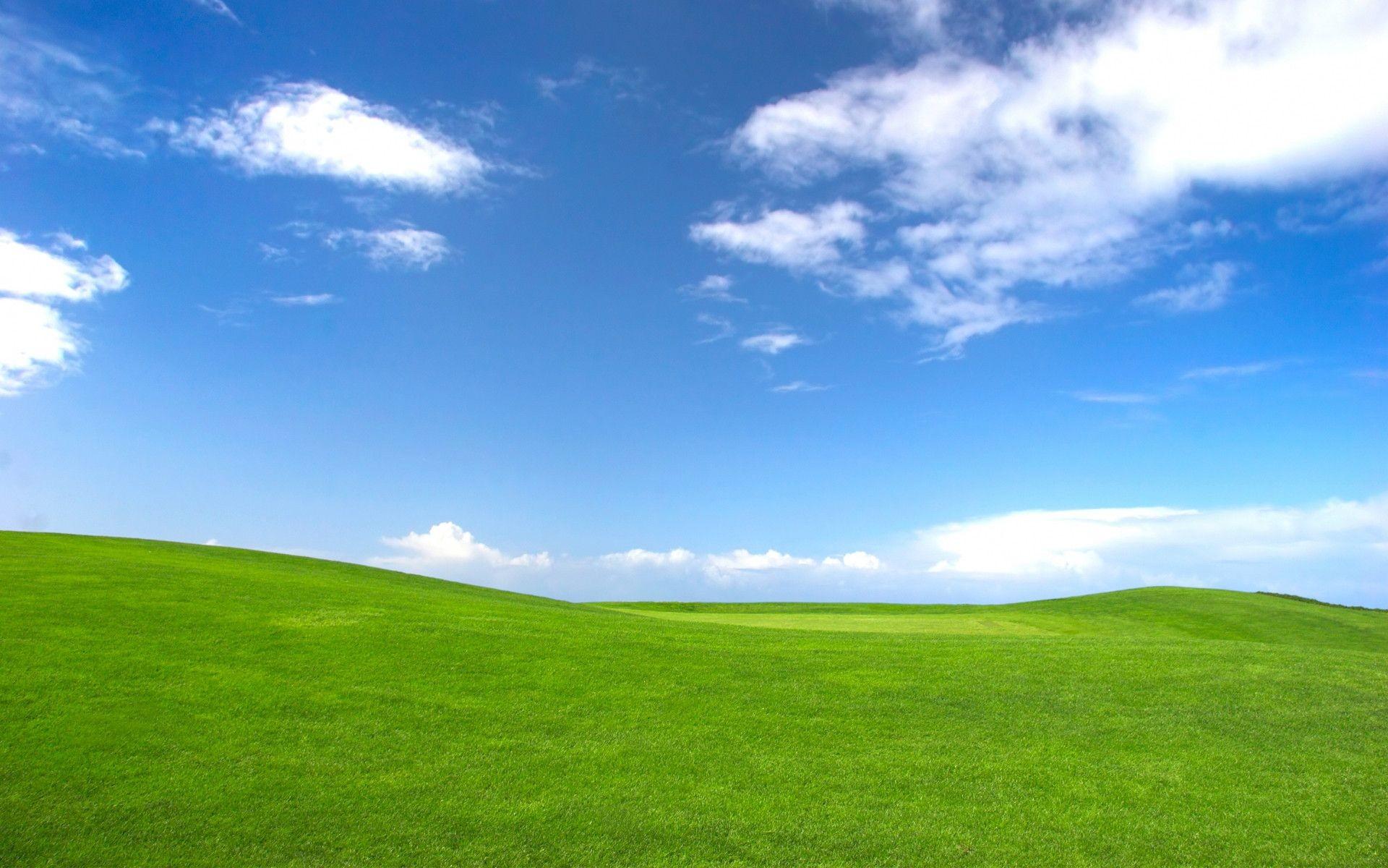 Windows XP Wallpaper Bliss ·① WallpaperTag