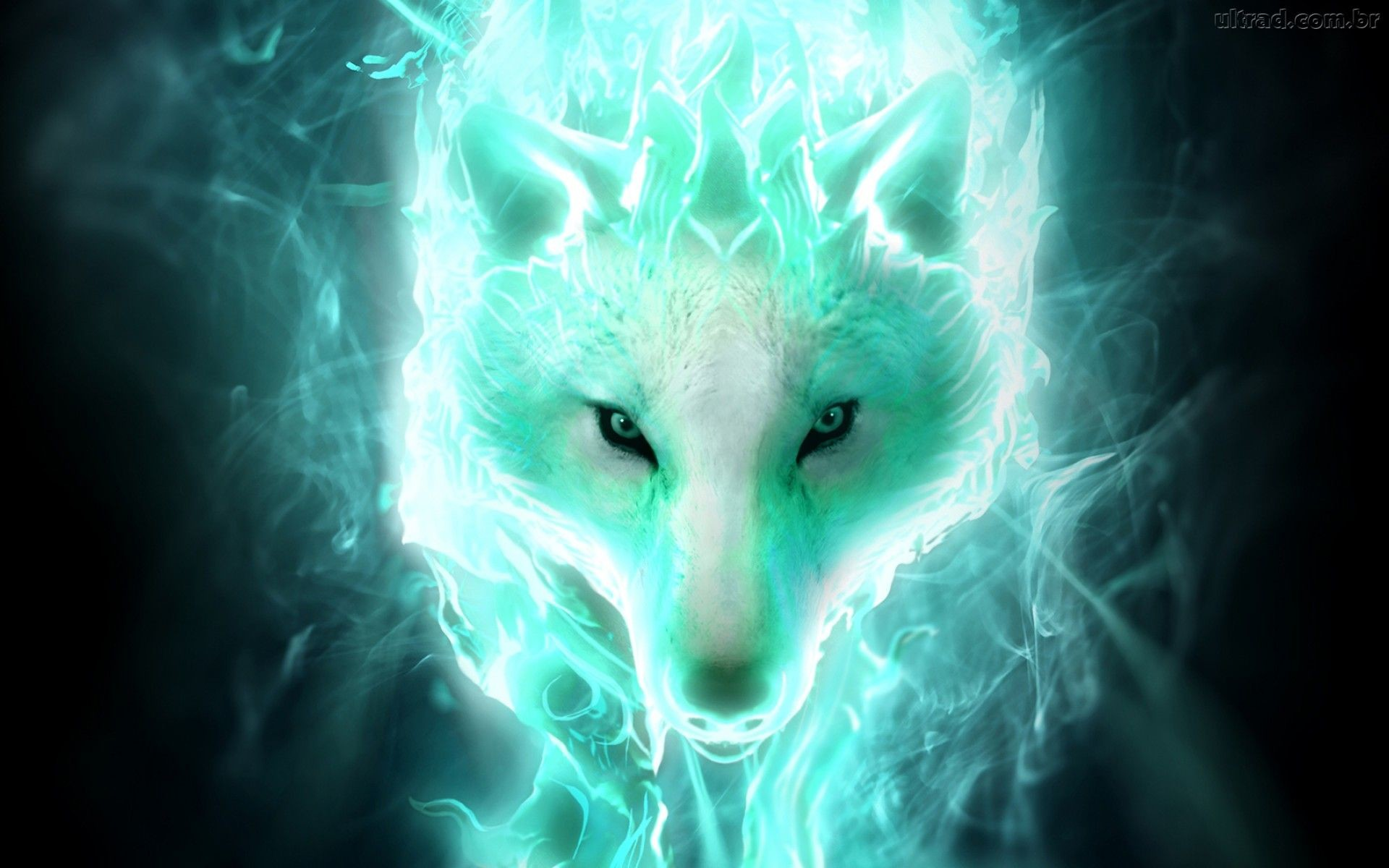 1920x1080 Blue Wolf Wallpaper Digital Art Wallpapers 28583