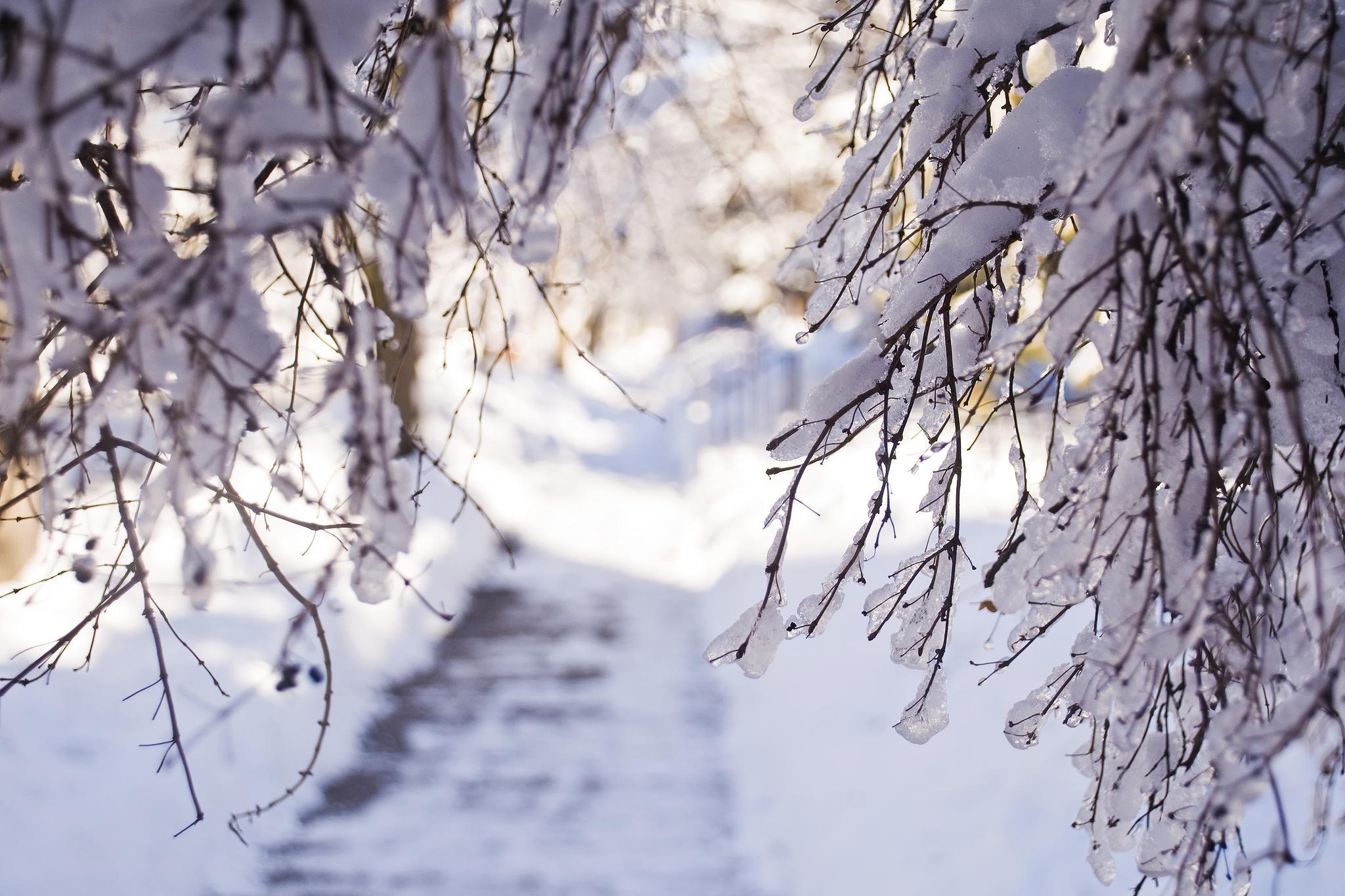 Winter Desktop Background ·① WallpaperTag