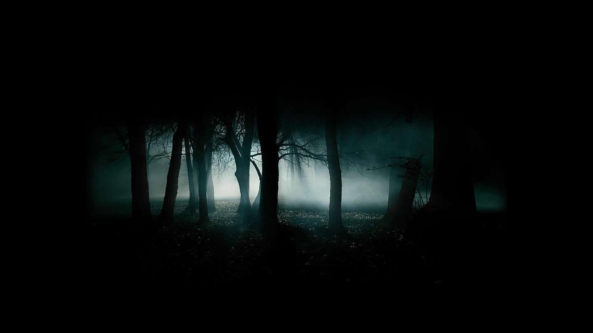 1920x1080 download scary dark forest kostenlos wallpaper 1920x1080 hd