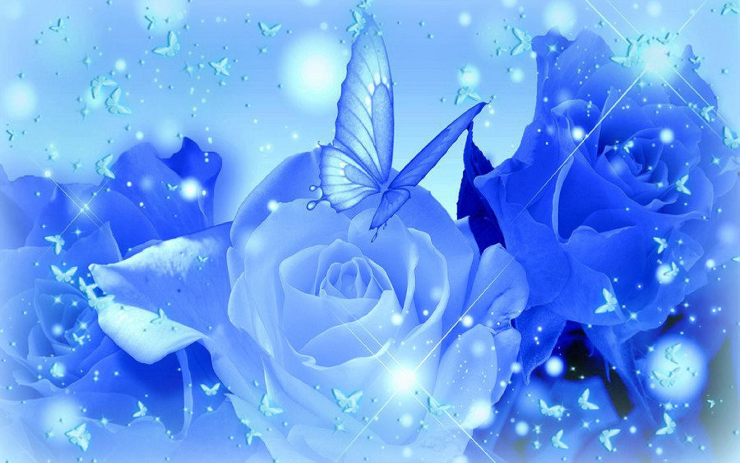 blue rose wallpaper 183�� wallpapertag