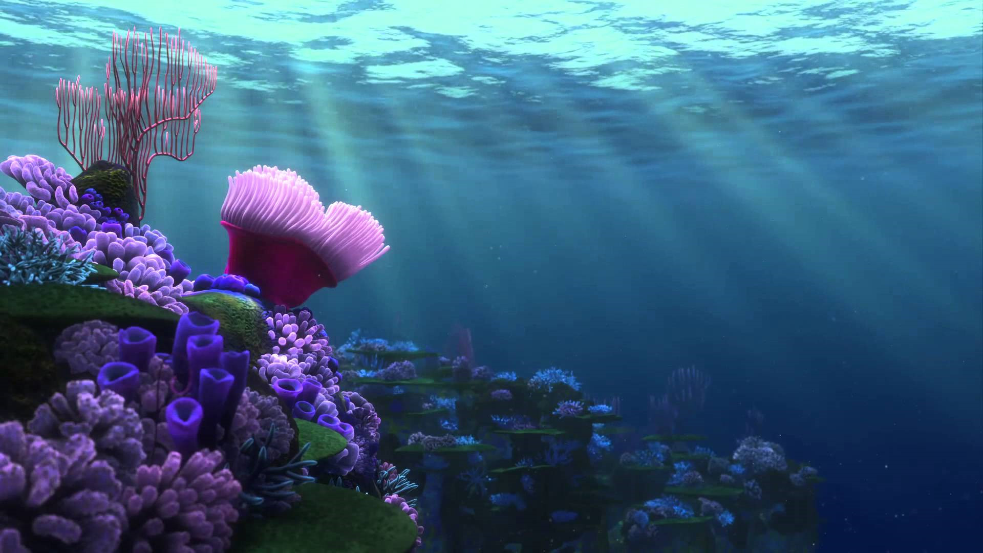 finding nemo hd wallpapers - photo #23