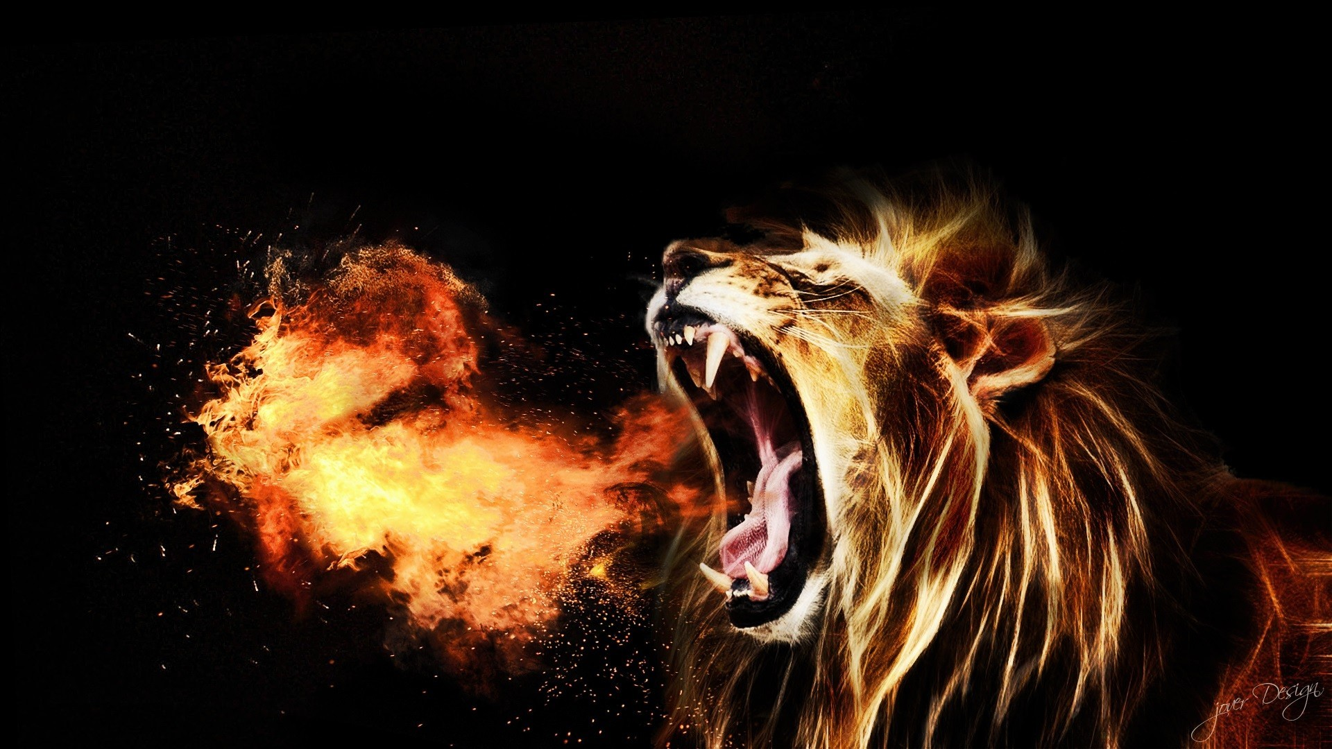 Download Lion Roaring Hd Wallpaper For Desktop Mobile: Fire Lion Wallpapers ·① WallpaperTag