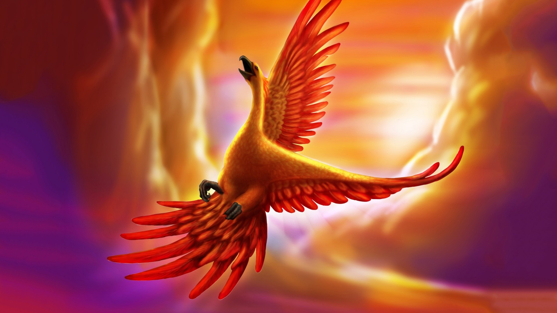 Phoenix Bird Wallpapers ·① WallpaperTag