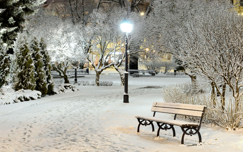 Winter Scene Wallpaper 183 ①