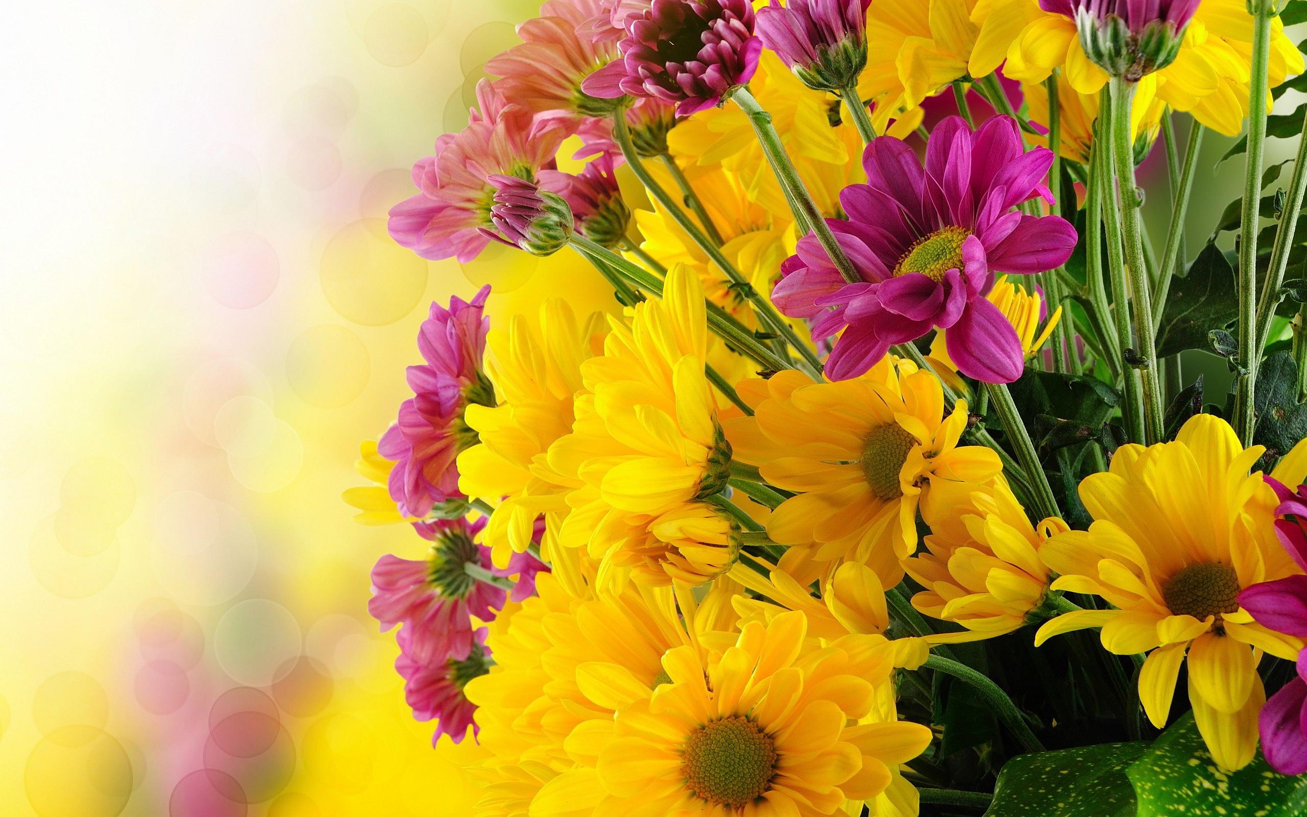 Yellow Flowers Wallpaper