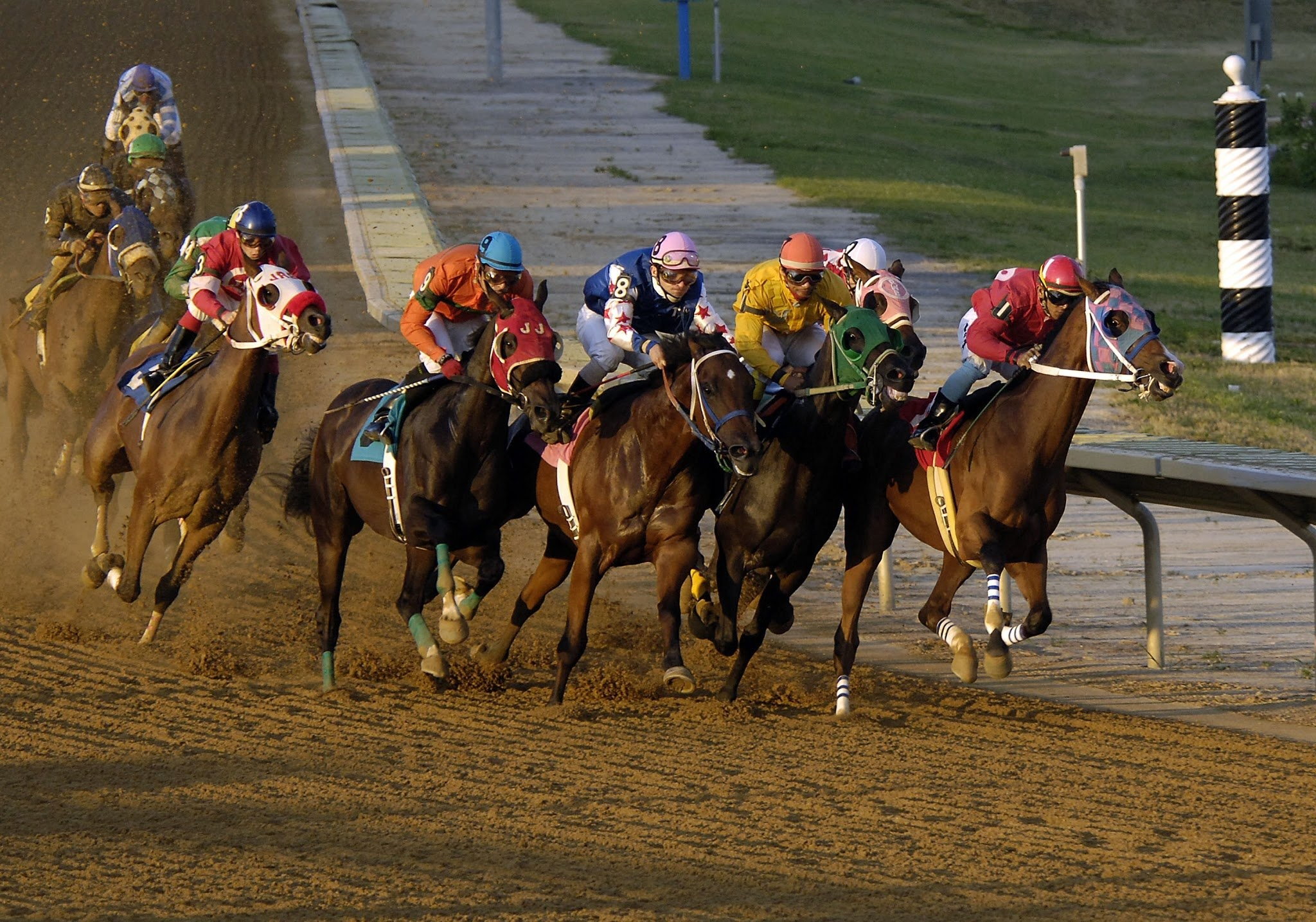 Free Horse Racing Bets