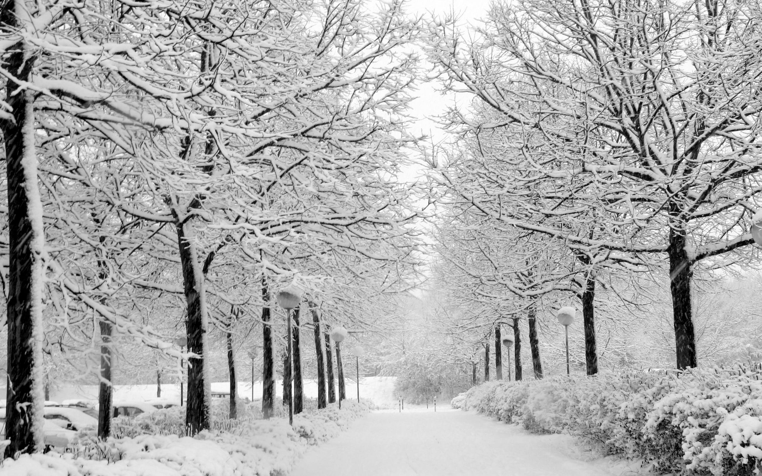 Free winter snow desktop wallpaper wallpapersafari.